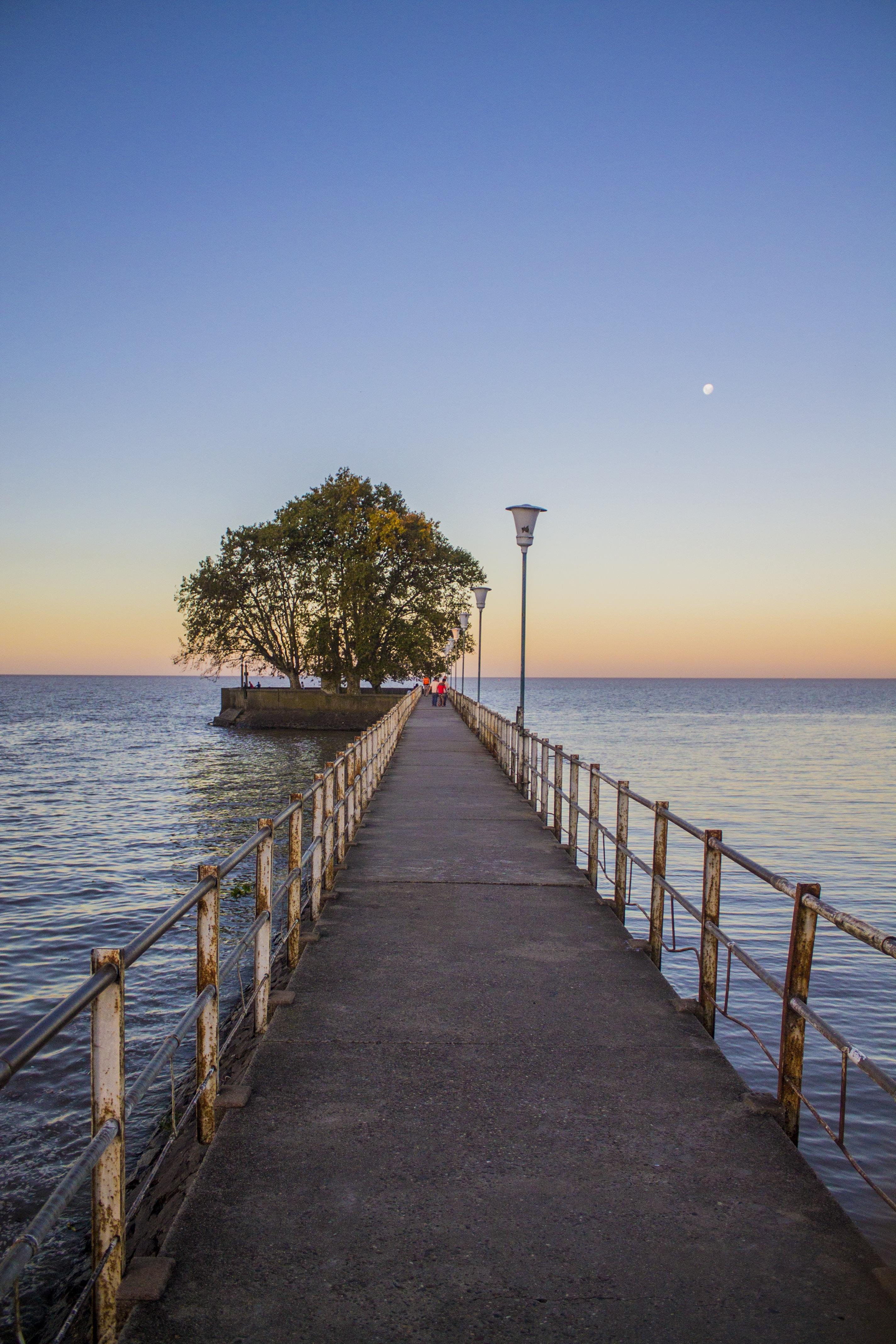 Free Images : Beach, Landscape, Sea, Coast, Tree, Nature