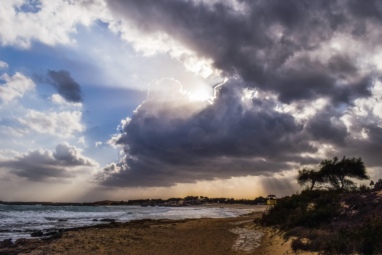 Kostenlose Foto Strand Landschaft Meer Küste Baum Wasser