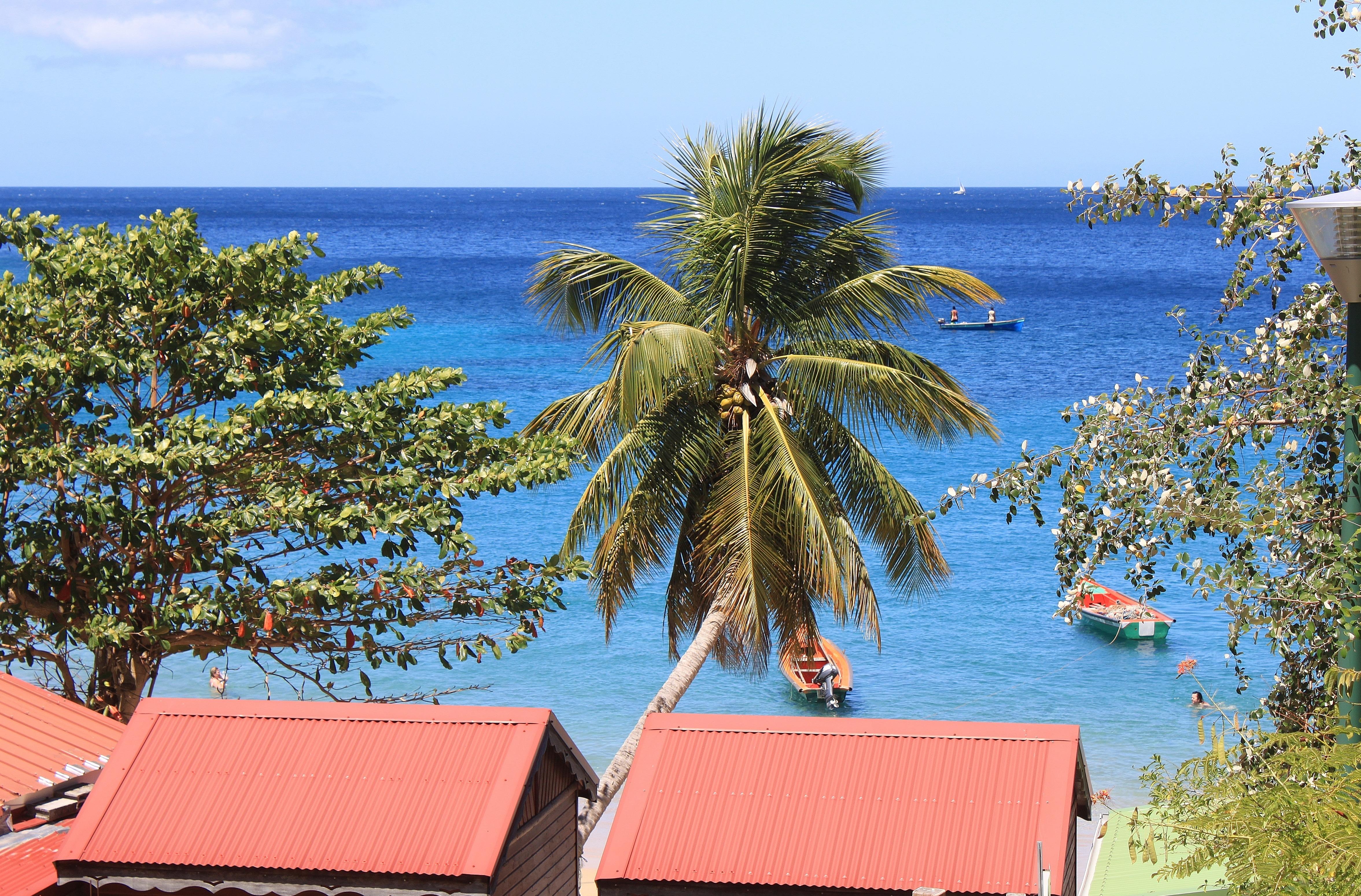 Beach Landscape Sea Coast Tree Water Ocean Plant Sky Palm Vacation Island Tourism Leisure Resort