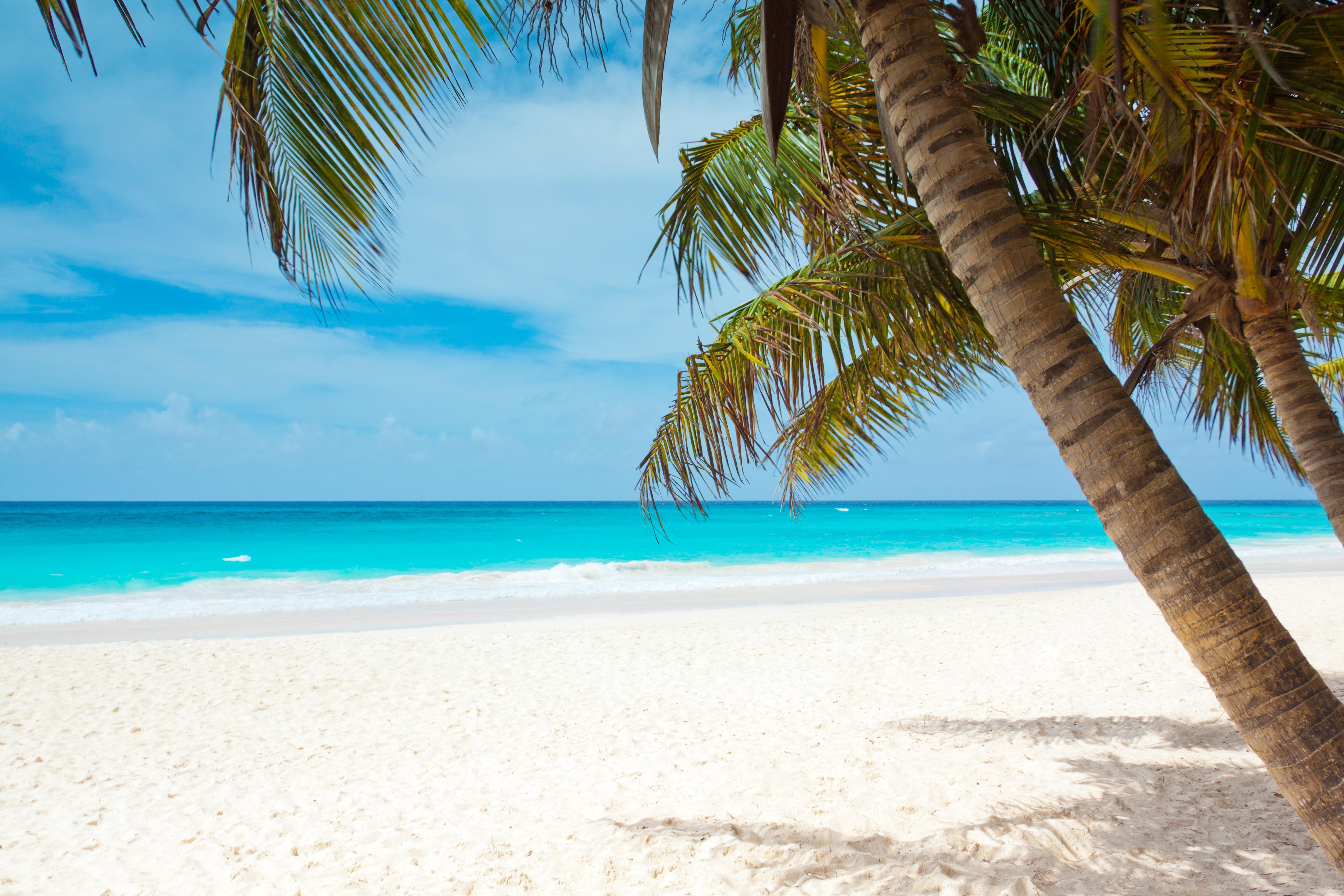 Free Images : Beach, Landscape, Sea, Coast, Sand, Ocean