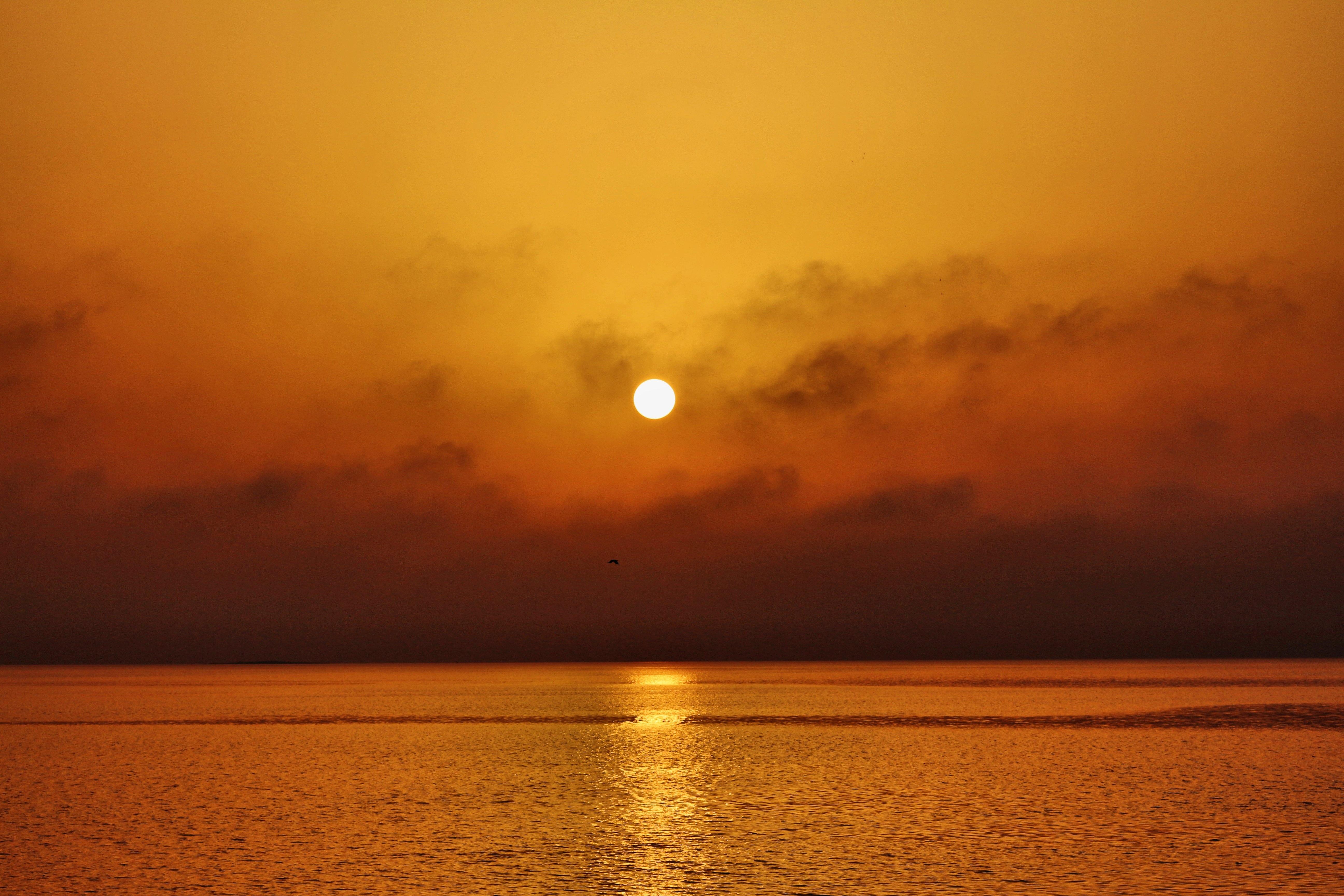 無料画像 : ビーチ, 風景, 海岸, 水, 自然, 海洋, 地平線, 雲, 空, 日光, 日の出, 日没, 太陽光 ...