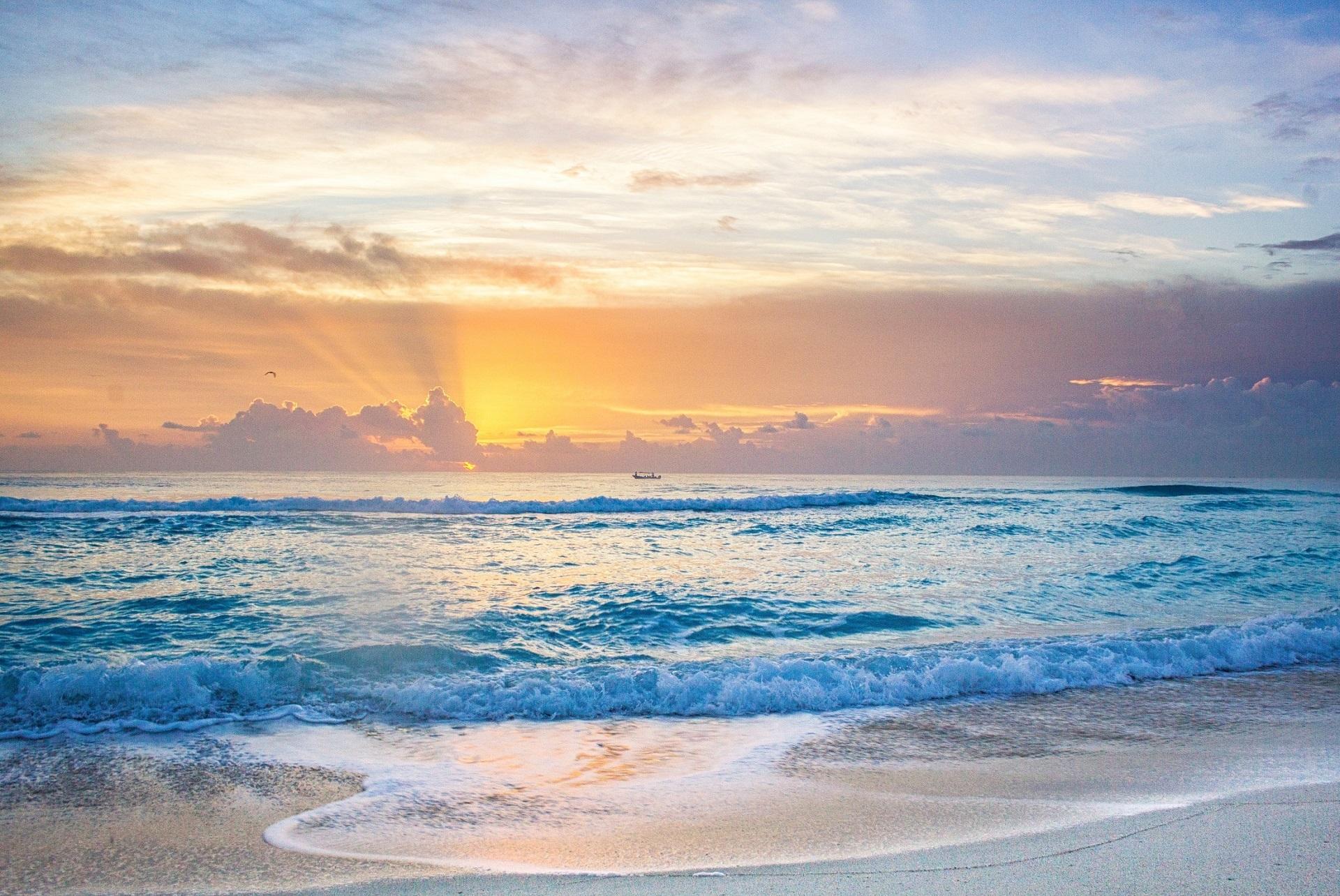 большая утро на берегу океана картинки уже доставили