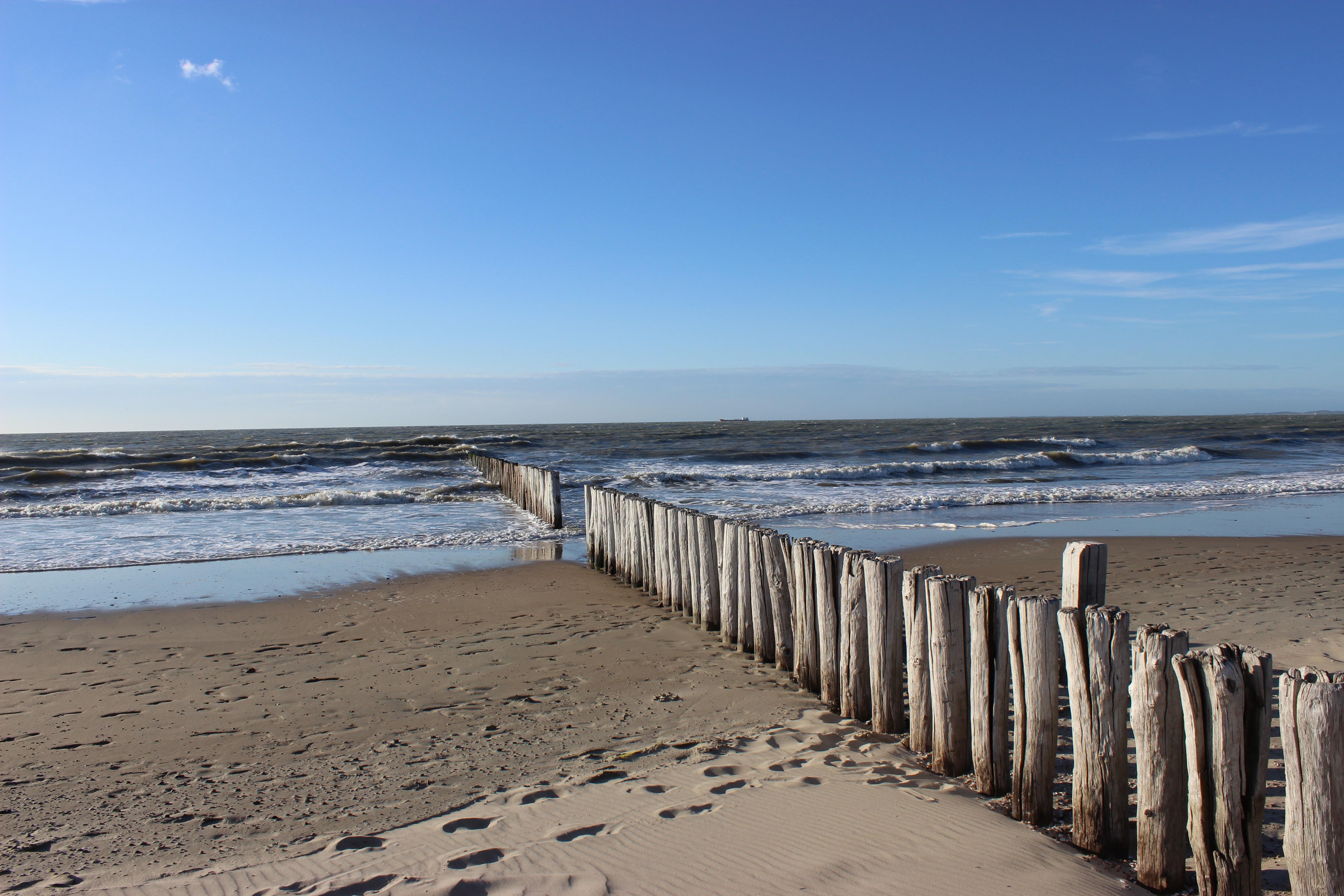 голландия фото пляжи российского предпринимателя