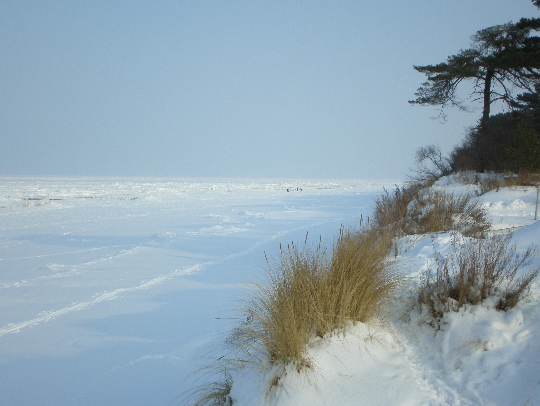 snow winter seasons sea - photo #10