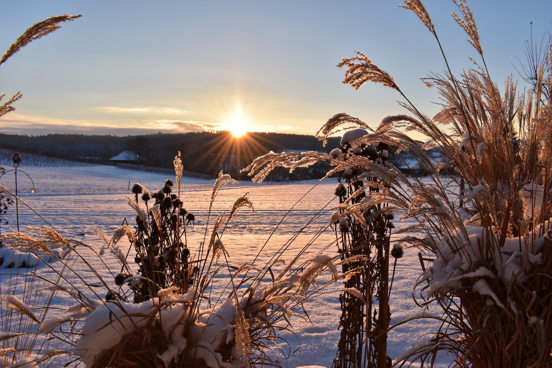 утро солнце снег картинки прощеное воскресенье люди