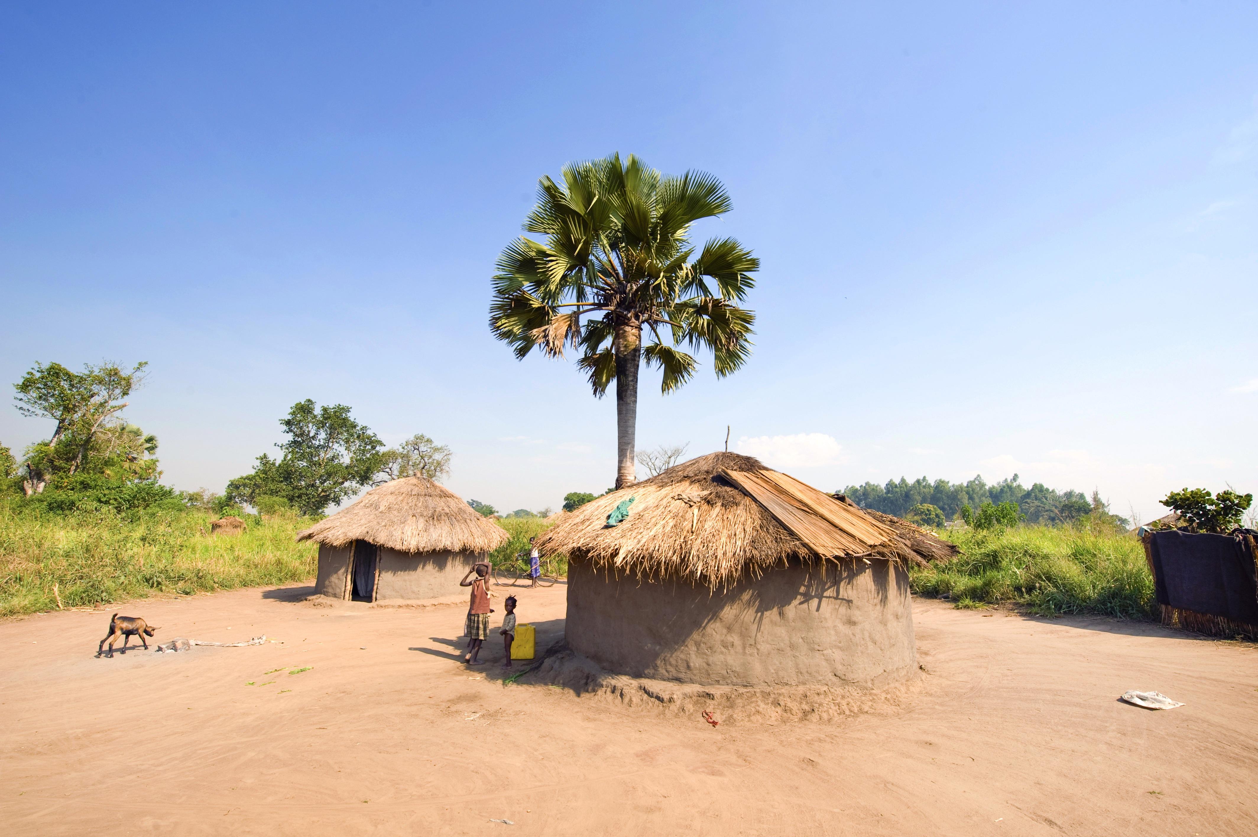 Plage paysage arbre maison bâtiment vacances cabane village rural boue afrique originaire de culture biens traditionnel