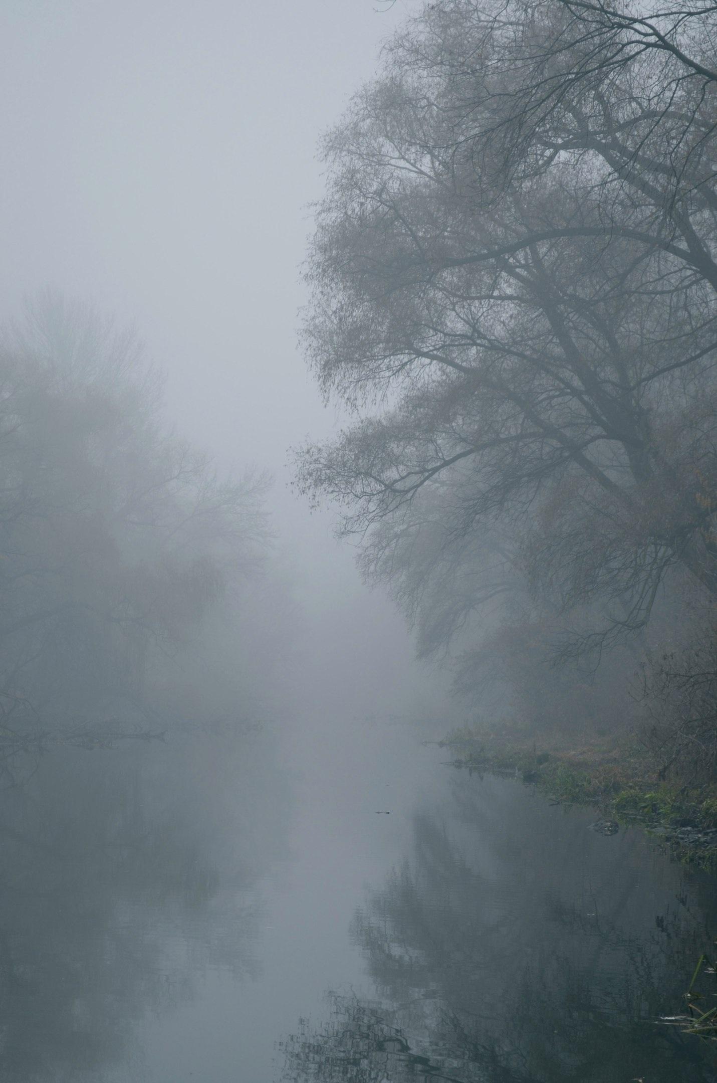 этих картинки иллюстрации туман само слово
