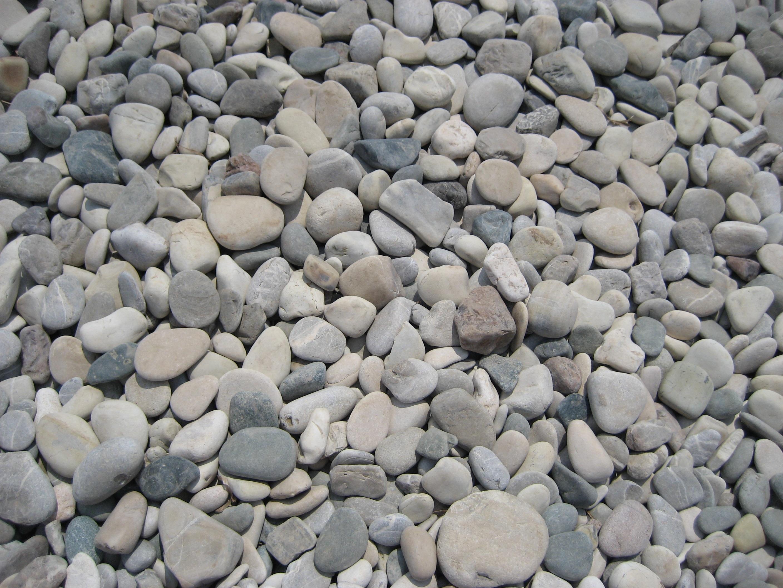 kostenlose foto strand natur rock runden kopfstein kieselstein steinwand material. Black Bedroom Furniture Sets. Home Design Ideas