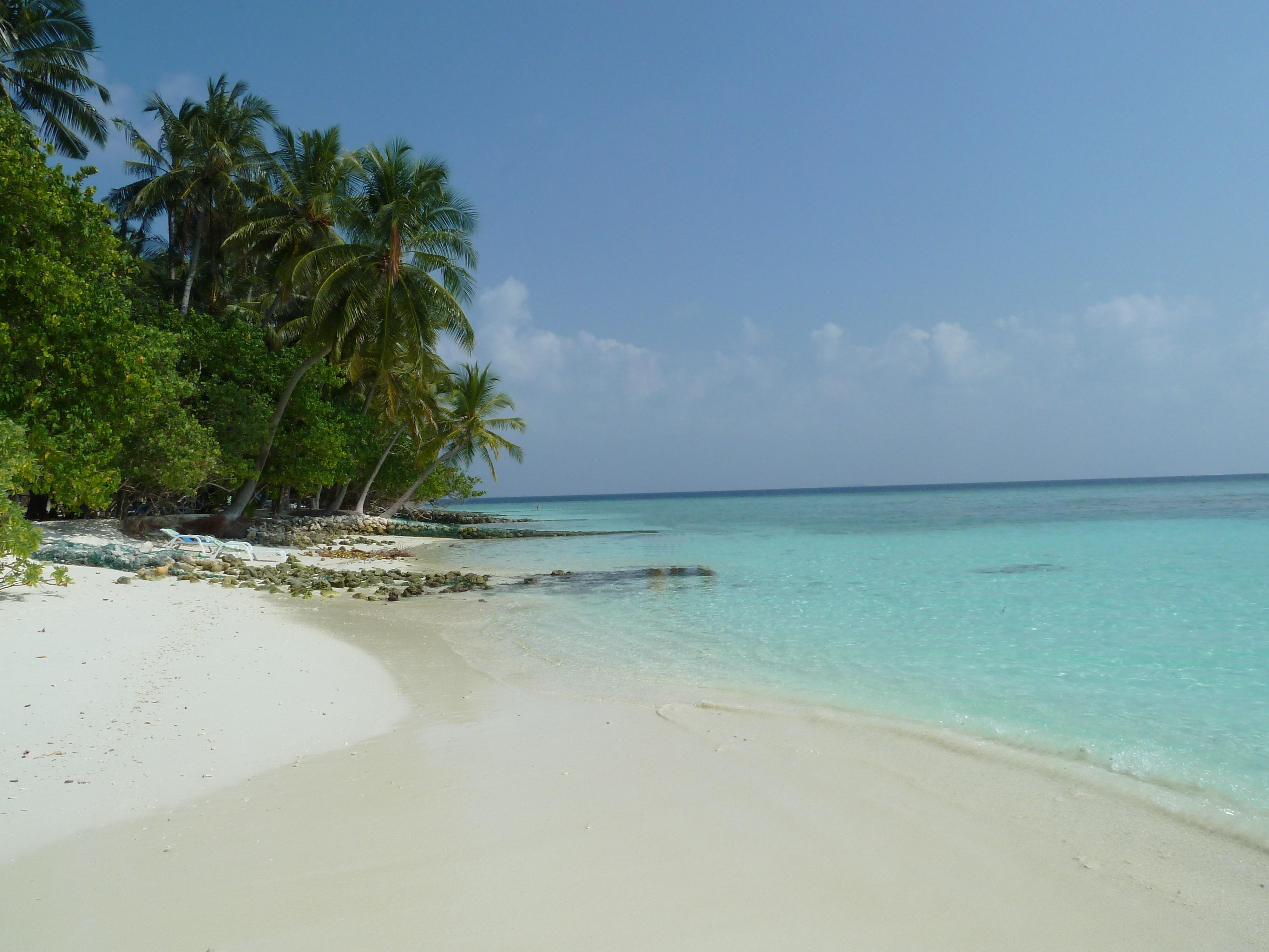 картинки карибский пляж близких