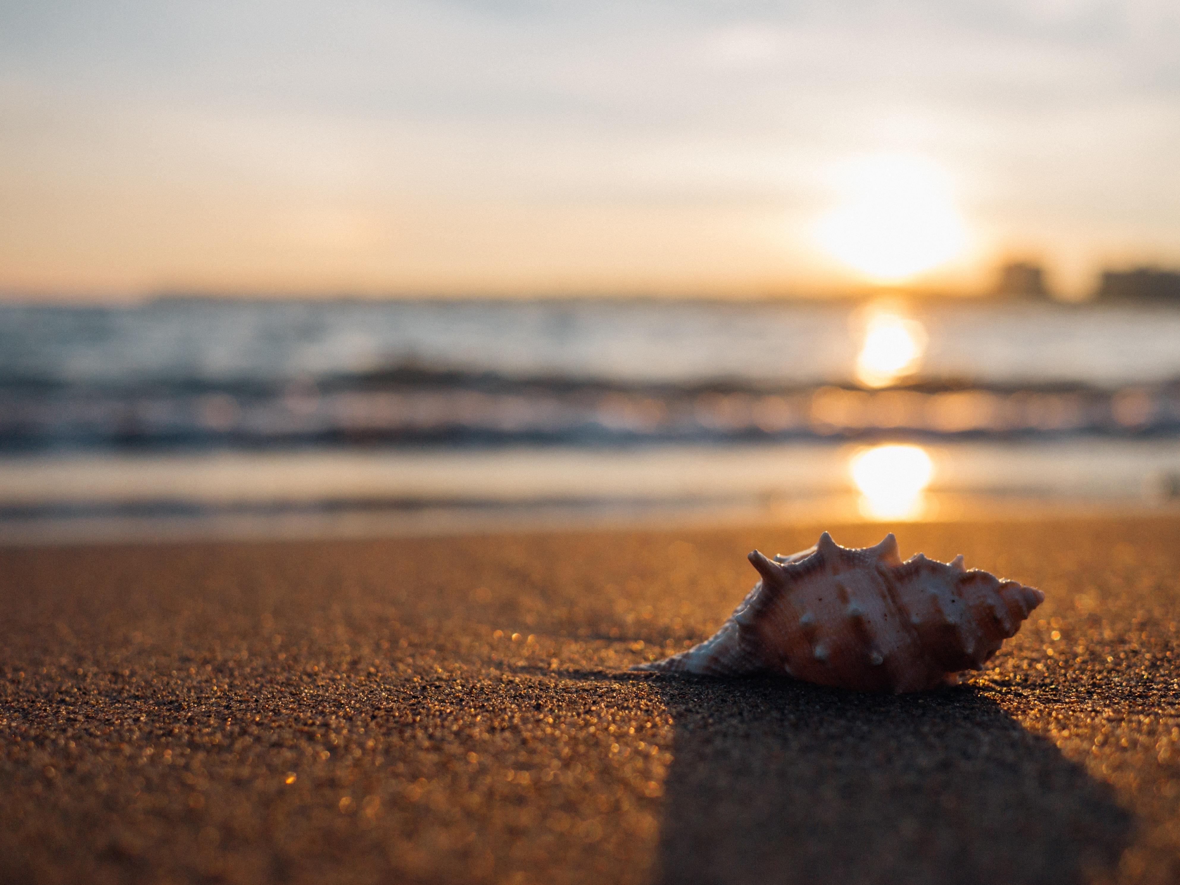 Free Images : coast, nature, rock, ocean, horizon, cloud, sky, sun