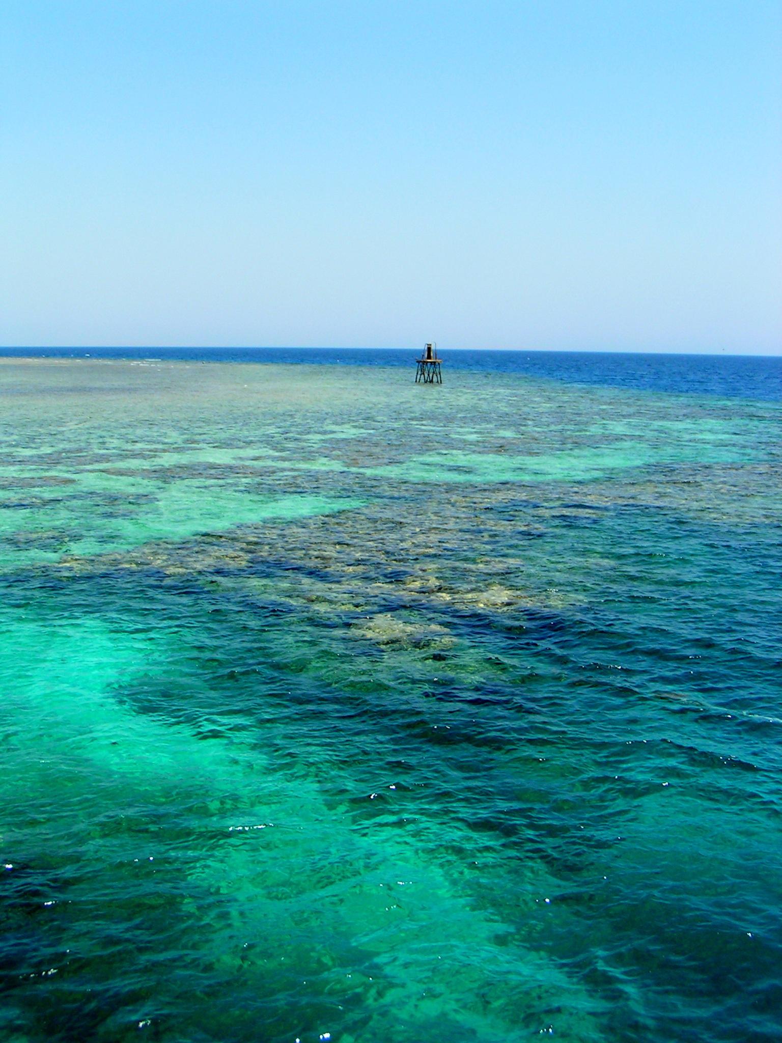 неминучий картинки красного моря египет все ещё видела