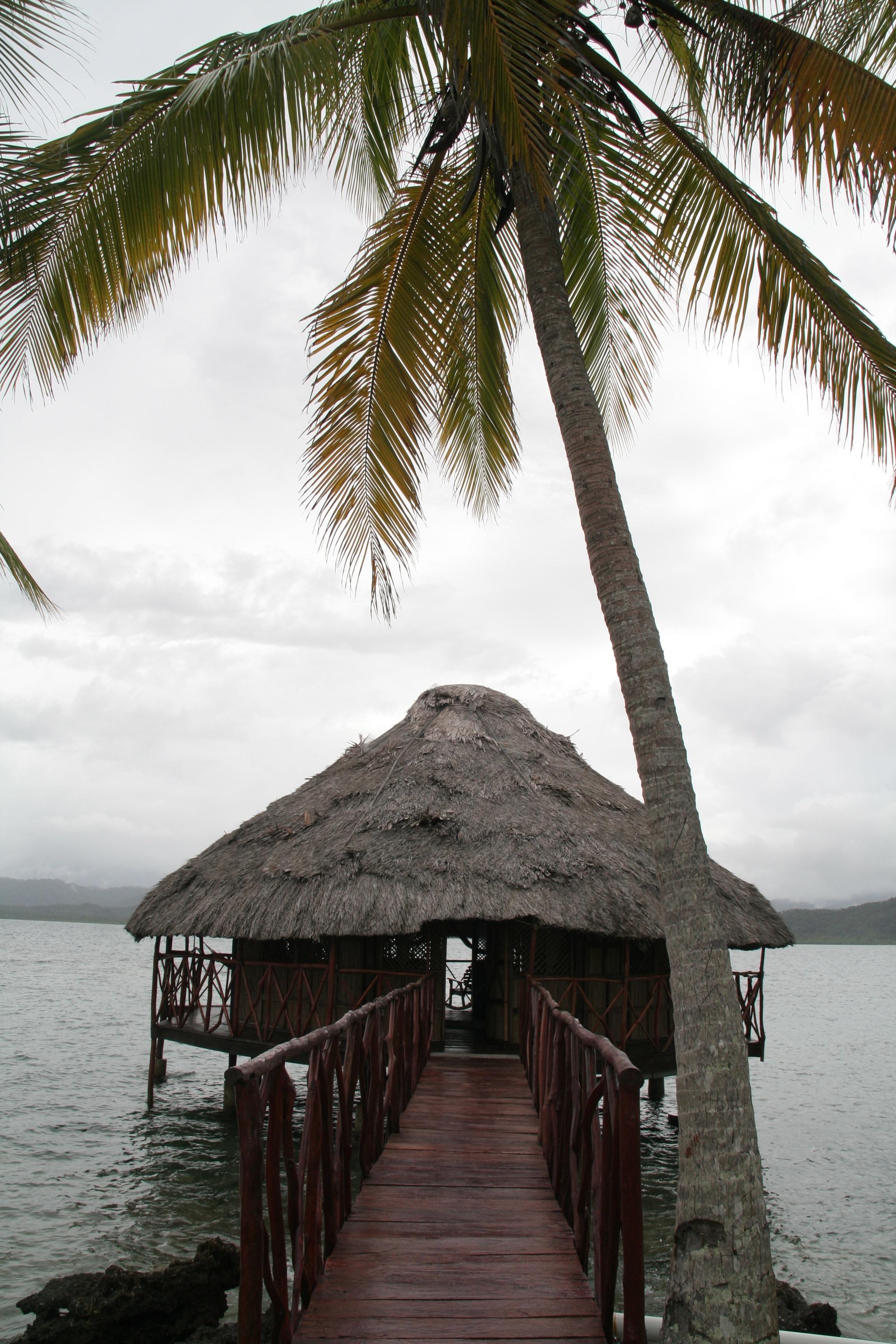 самолет давно картинки остров с пальмой и хижиной они