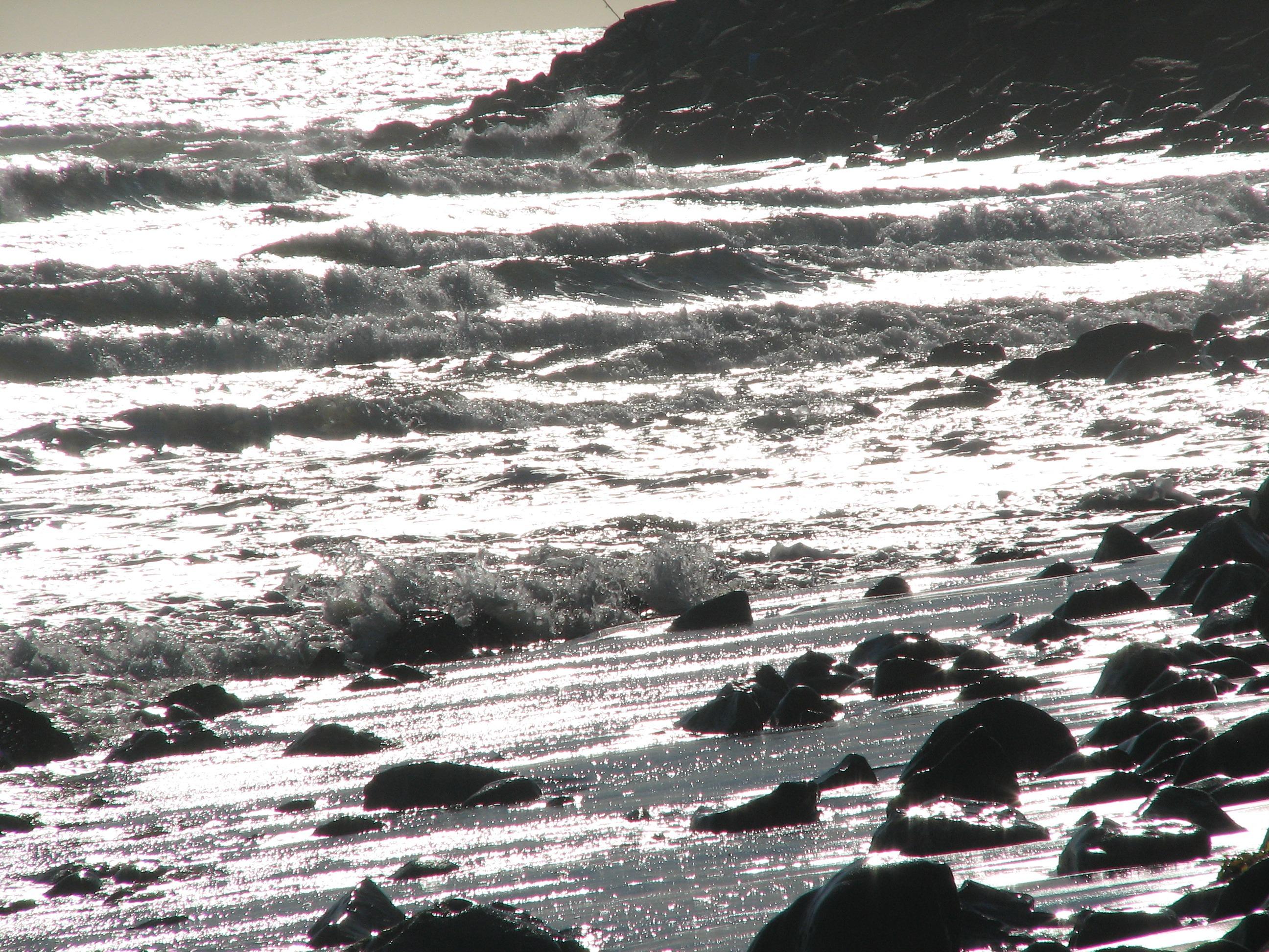csendes-óceáni tengerparton hogyan működik a kálium társkereső?