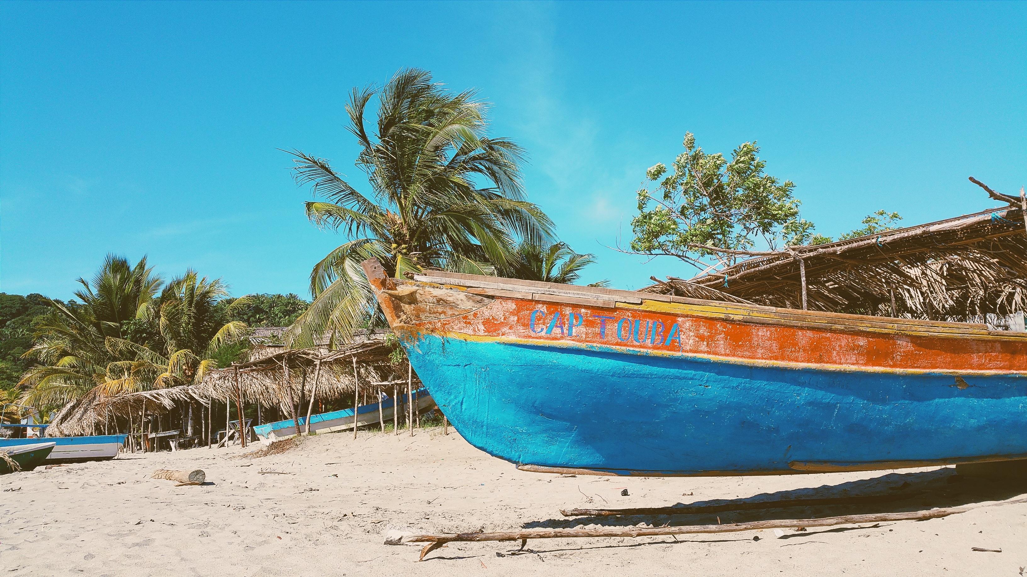 Palm Island Long Lens