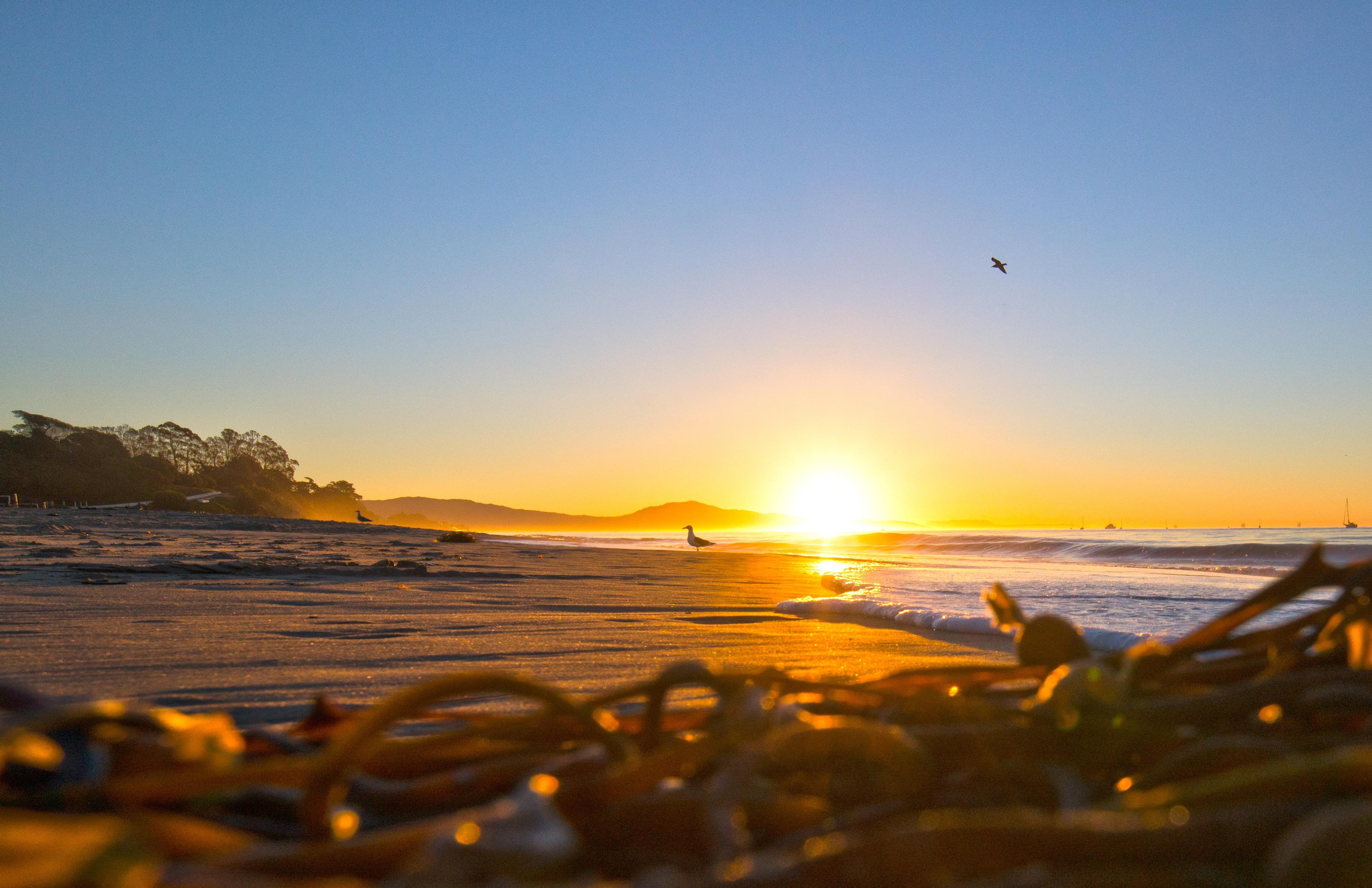 Море и солнце картинки фото