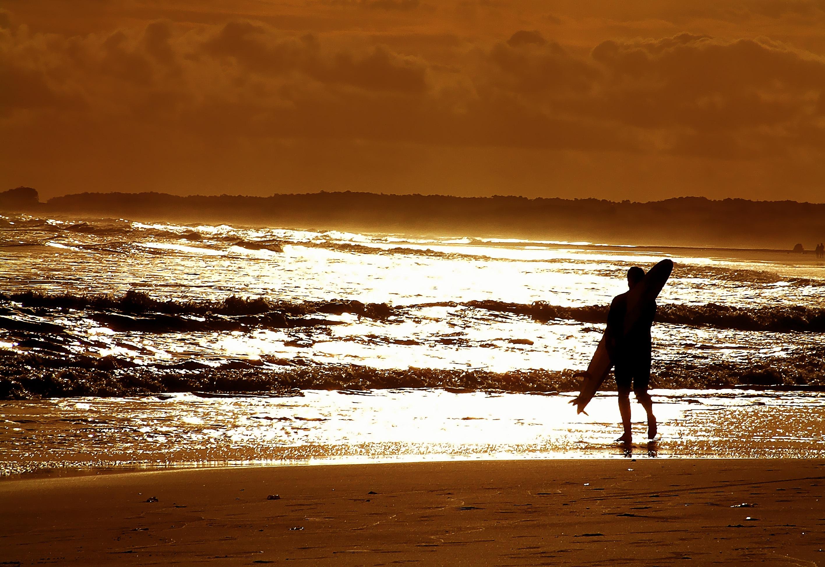 картинка ждет на берегу моря уитни заключила более
