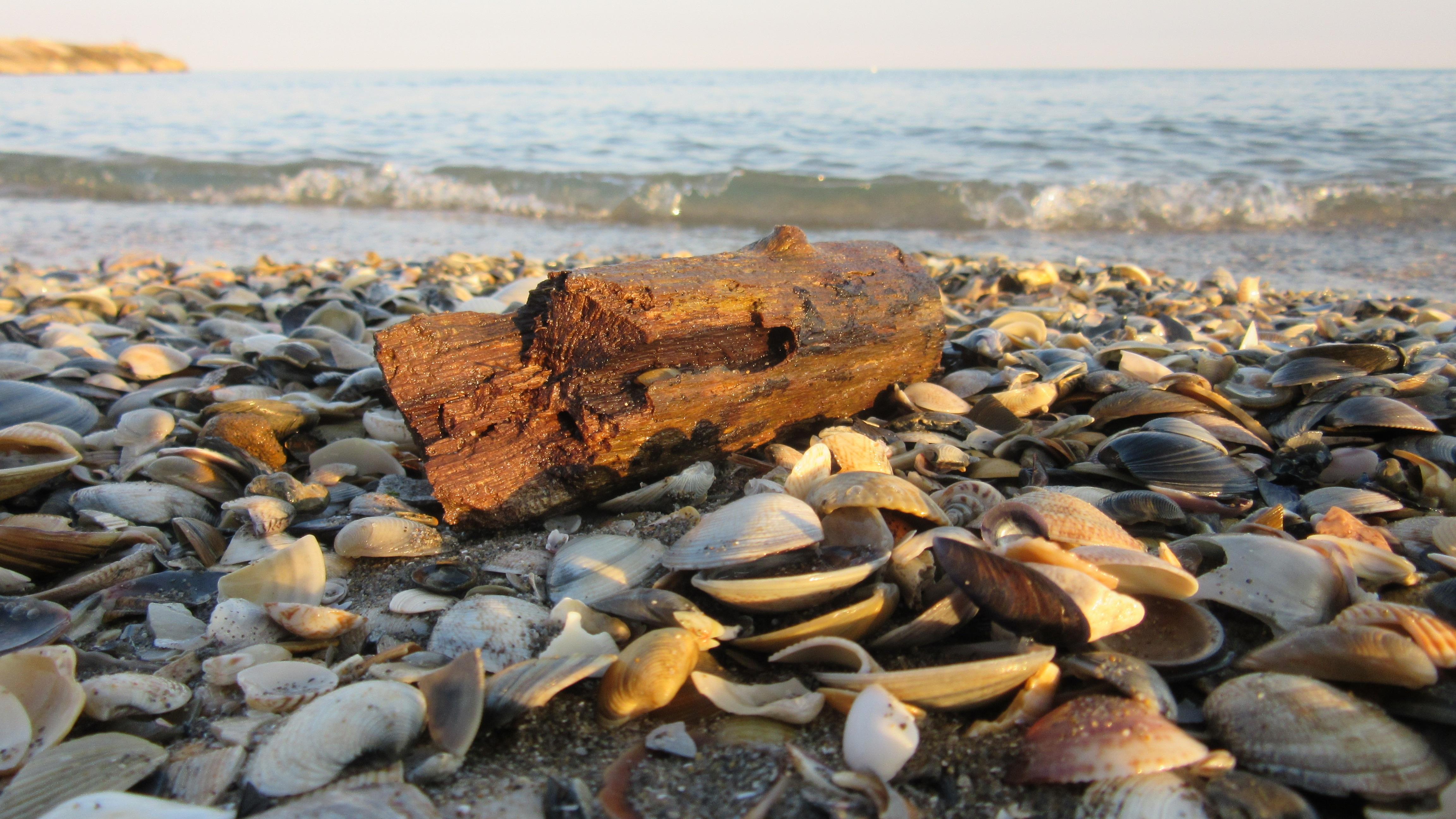 Gratis afbeeldingen strand zee kust zand rots oceaan kust