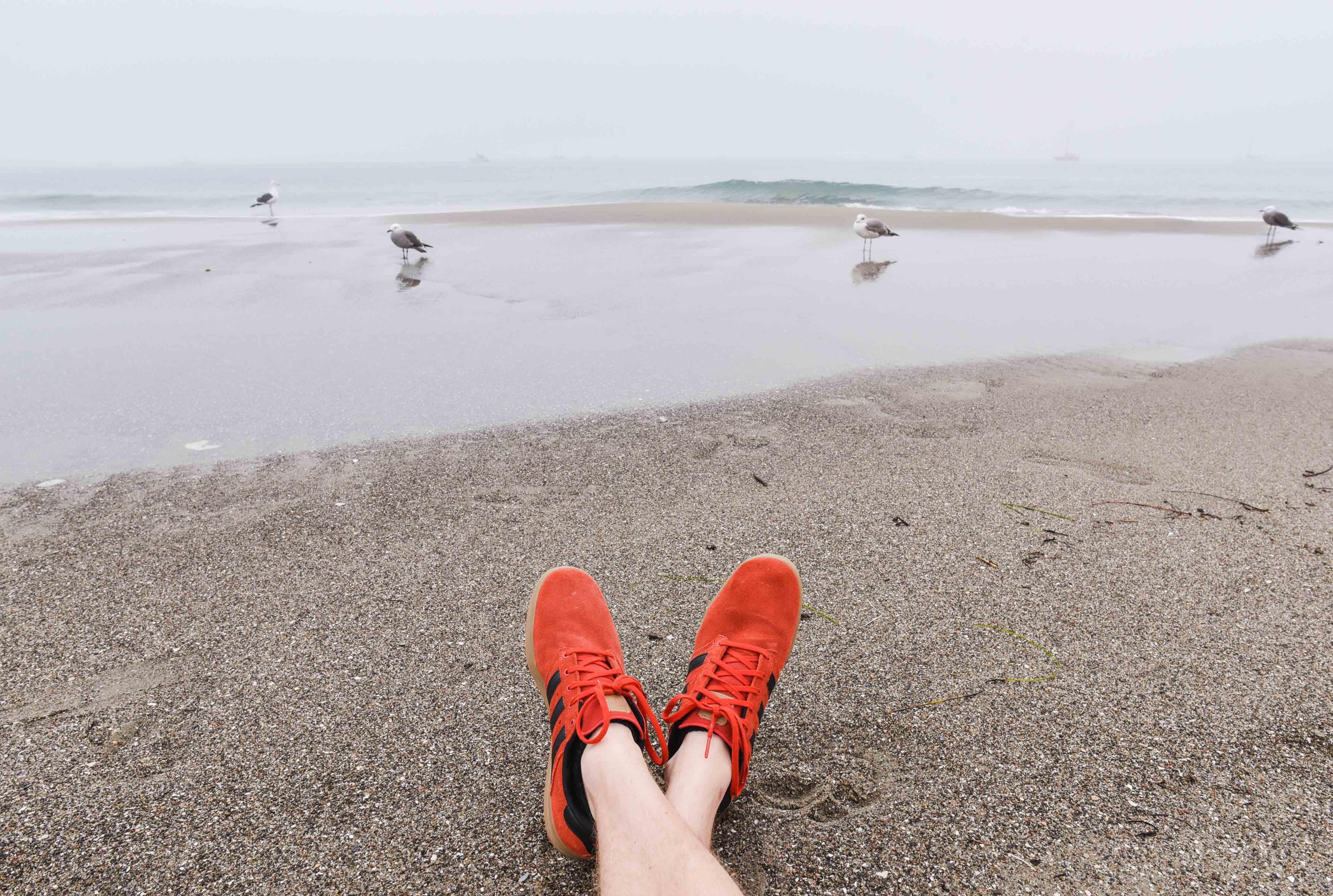 Gambar : pasir, Kaki, liburan, pantai laut, bahan, santai, camar