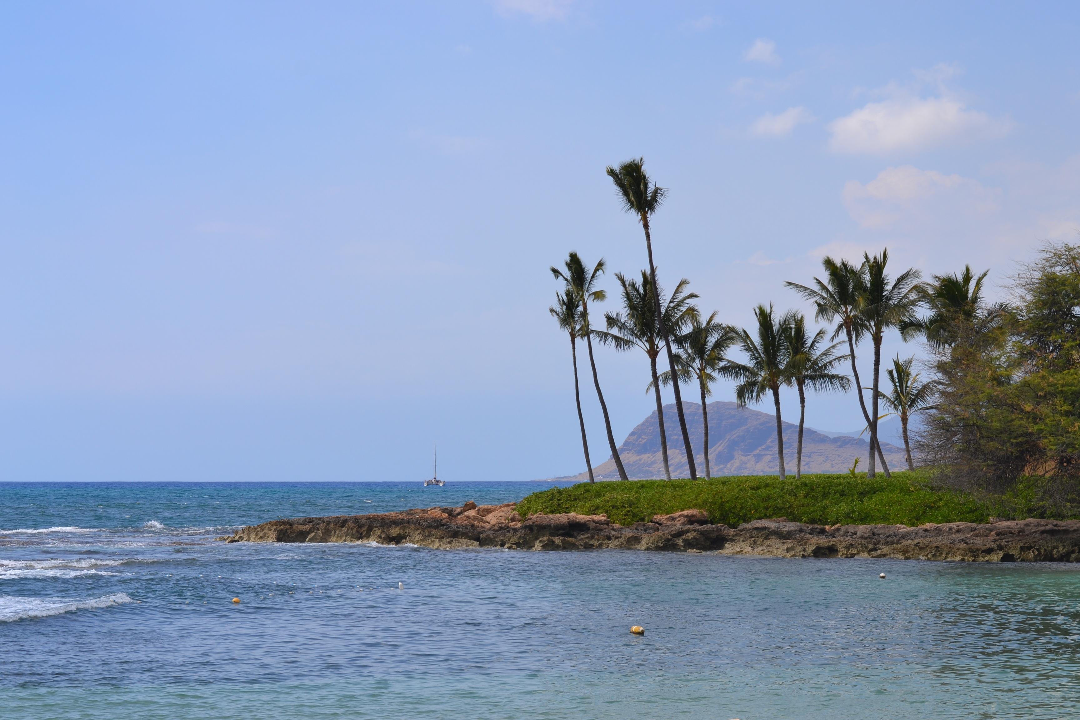 Free Images Sea Coast Tree Outdoor Ocean Horizon