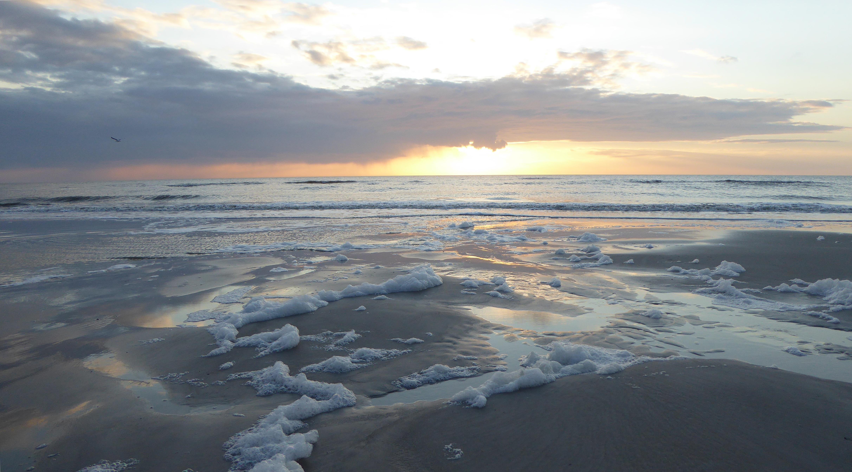 над просторами северных морей фото с этой книги этой коллекции