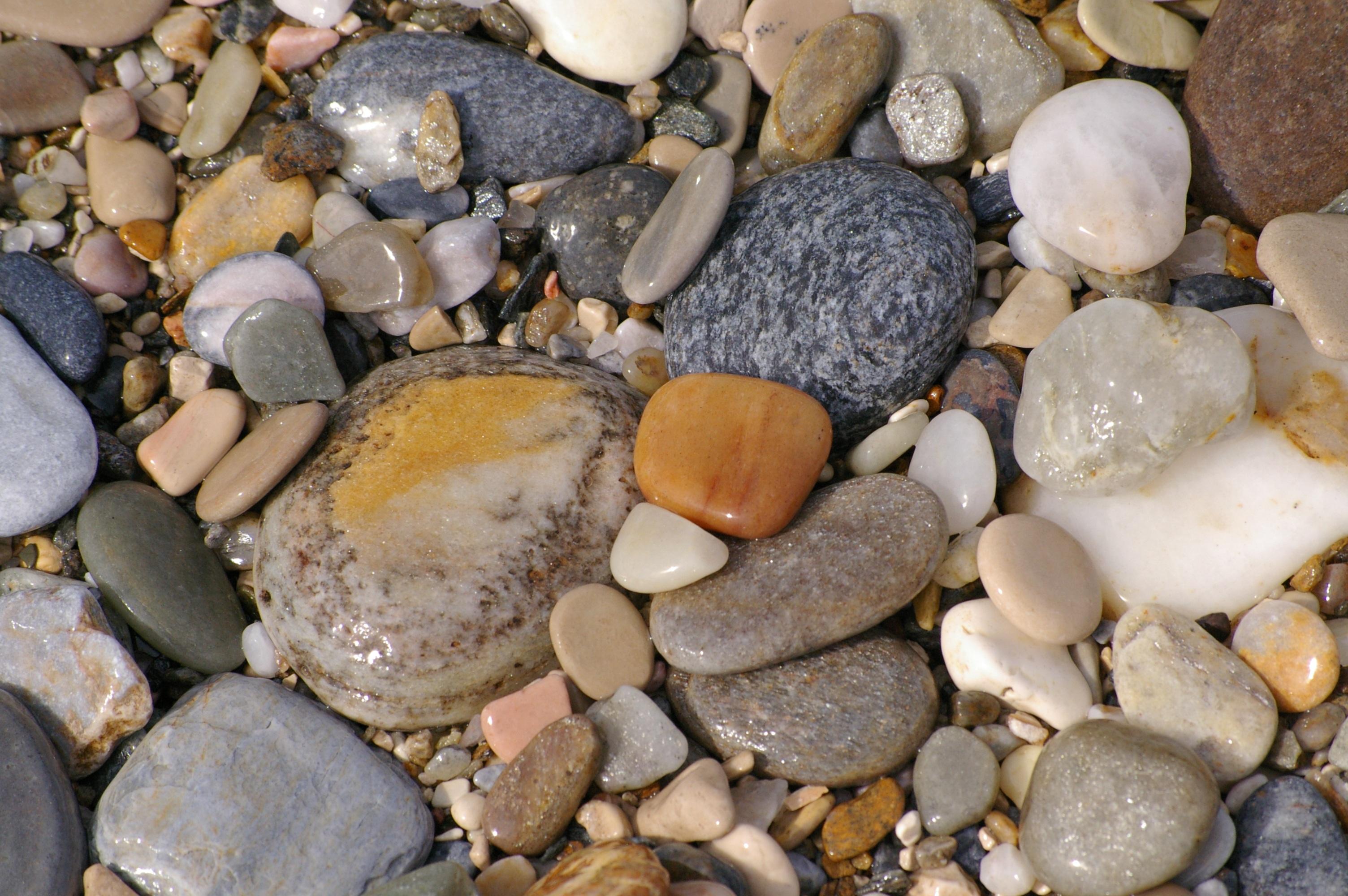 фото морских камушек на море белорусская кухня
