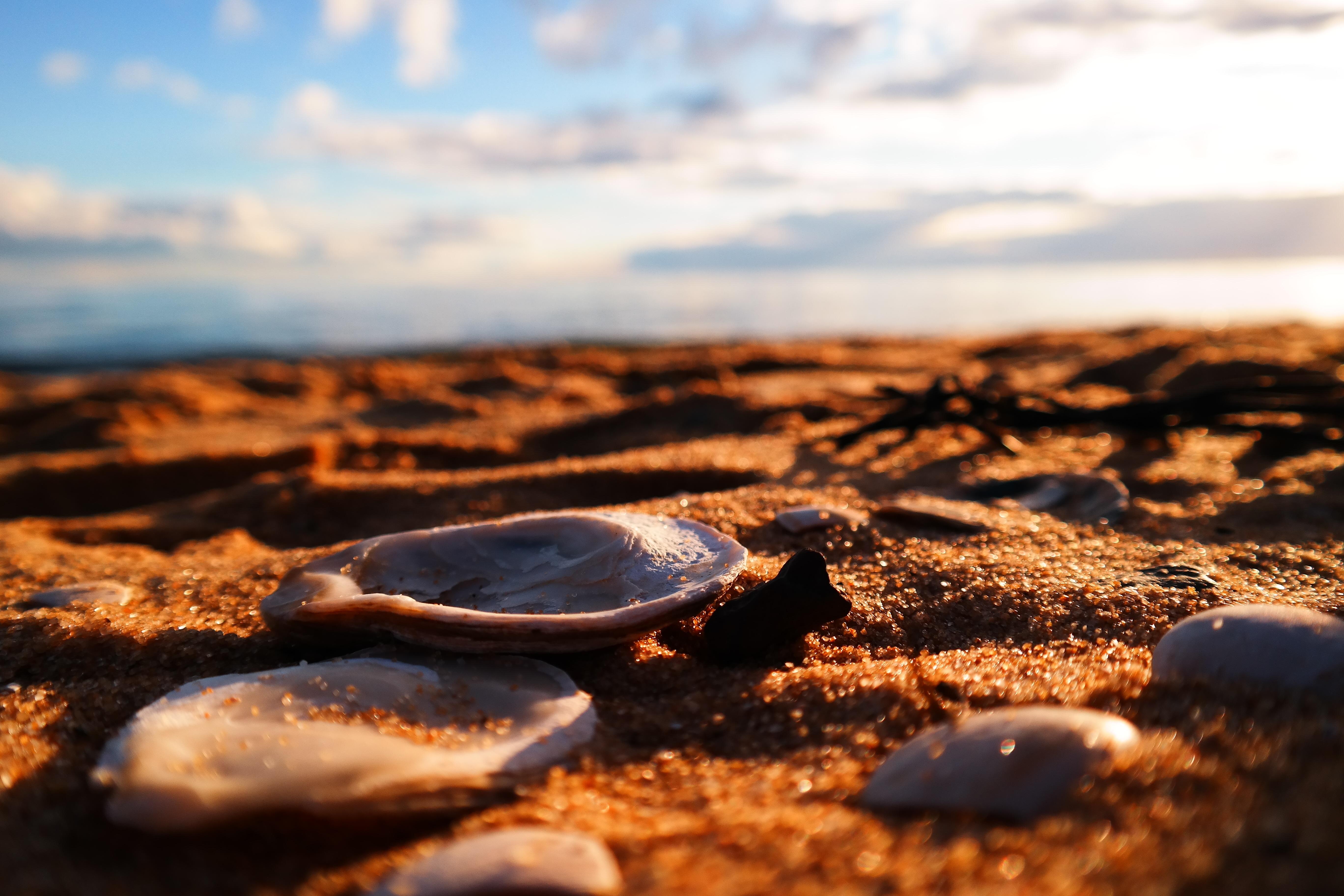 Free Images Beach Sea Coast Water Nature Sand Rock