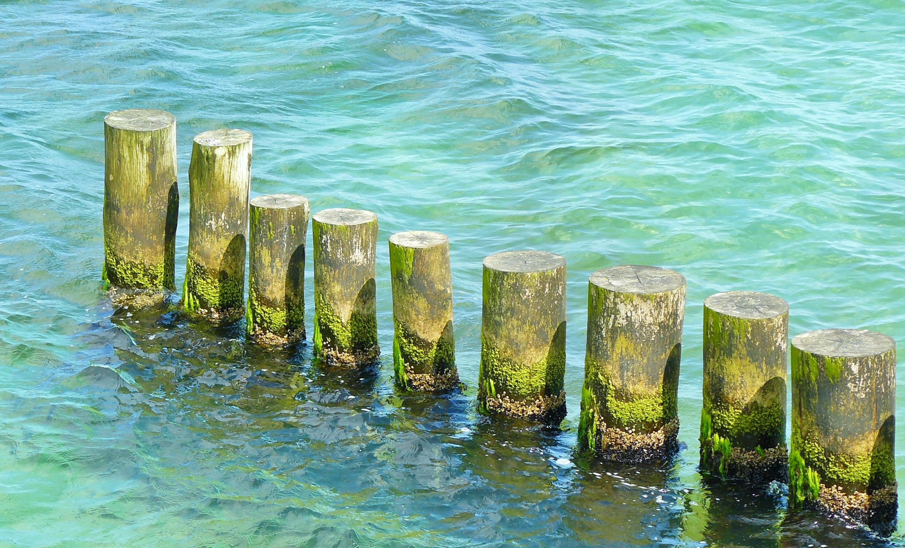 Fotos gratis : playa, costa, Oceano, ligero, apuntalar, ola, verde ...