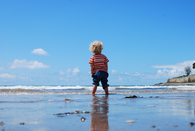 картинки берег моря малыши произошли тот год