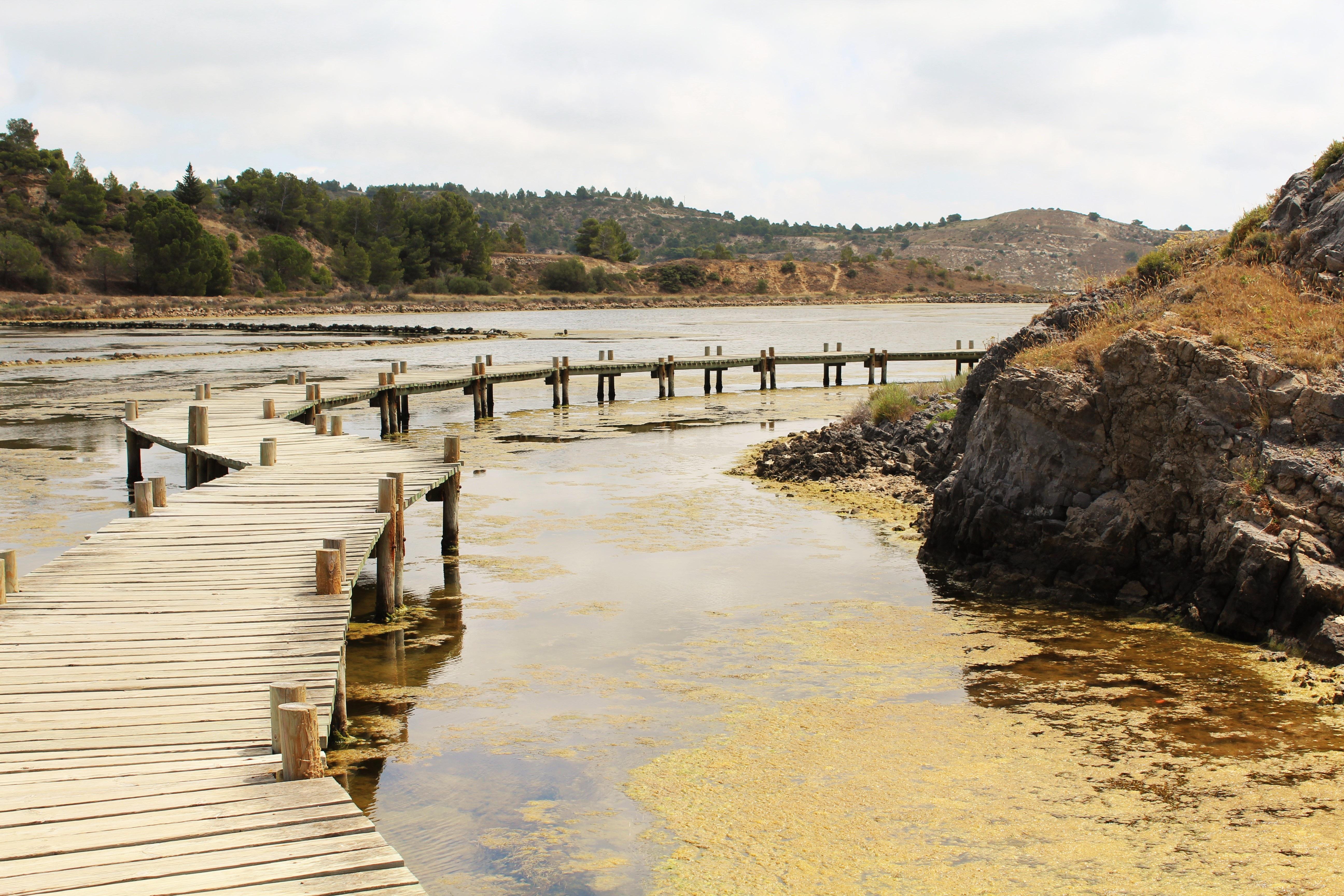 gratis billeder   strand  hav  kyst  sti  vandring  bro