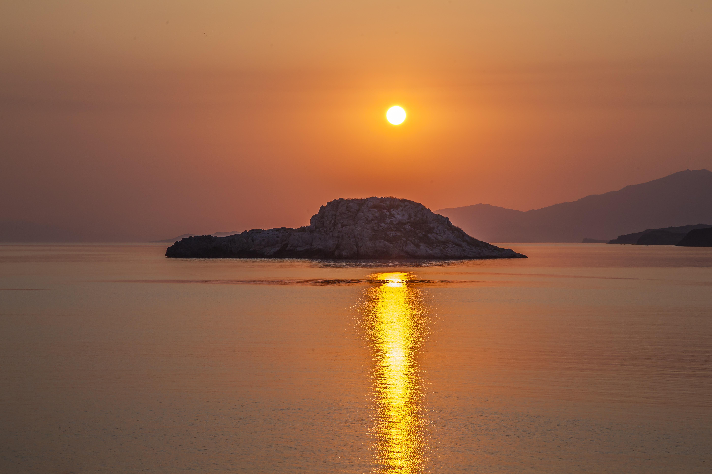 Vapaa musta Lesbos