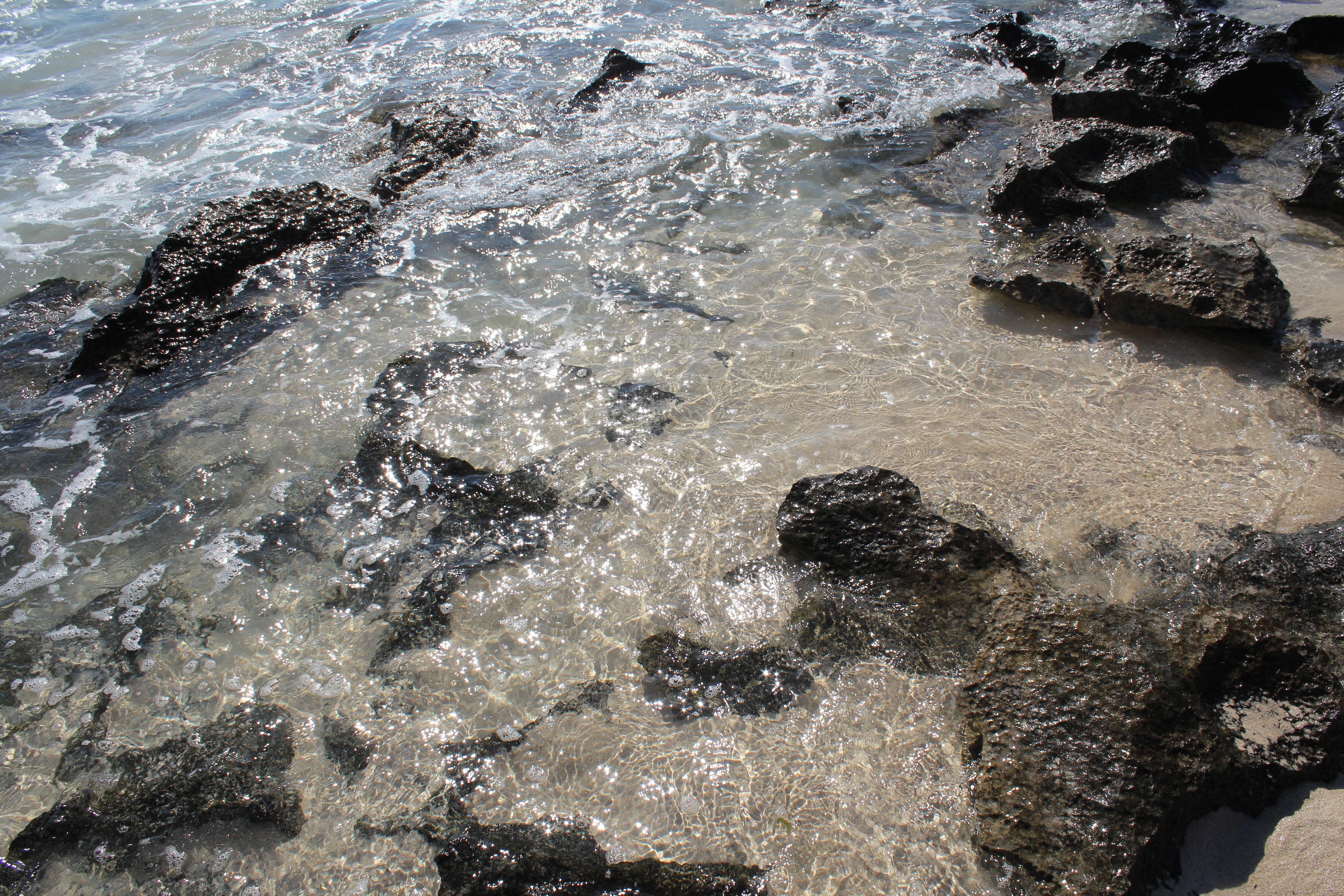 Gratis afbeeldingen strand zee kust water rots oceaan golf