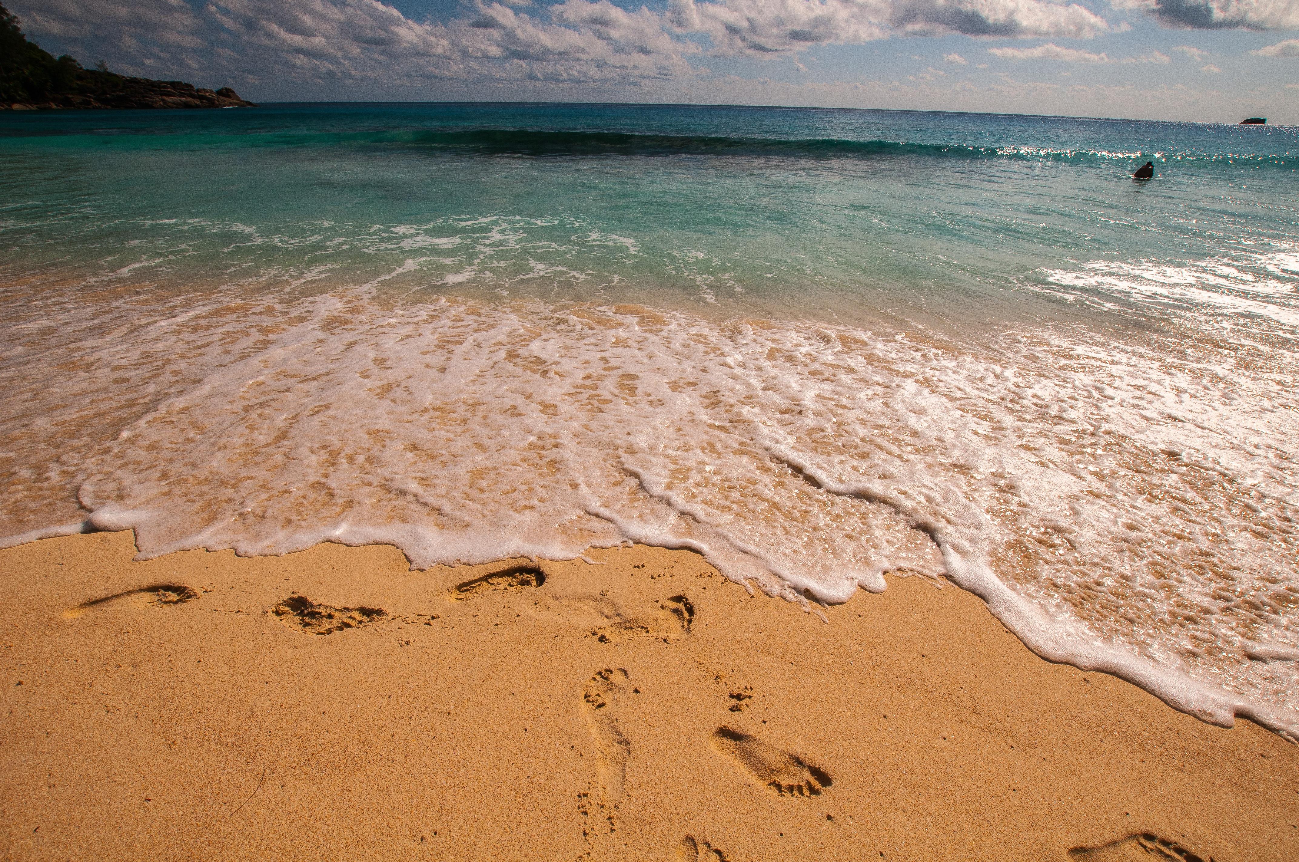Пляж на море картинки