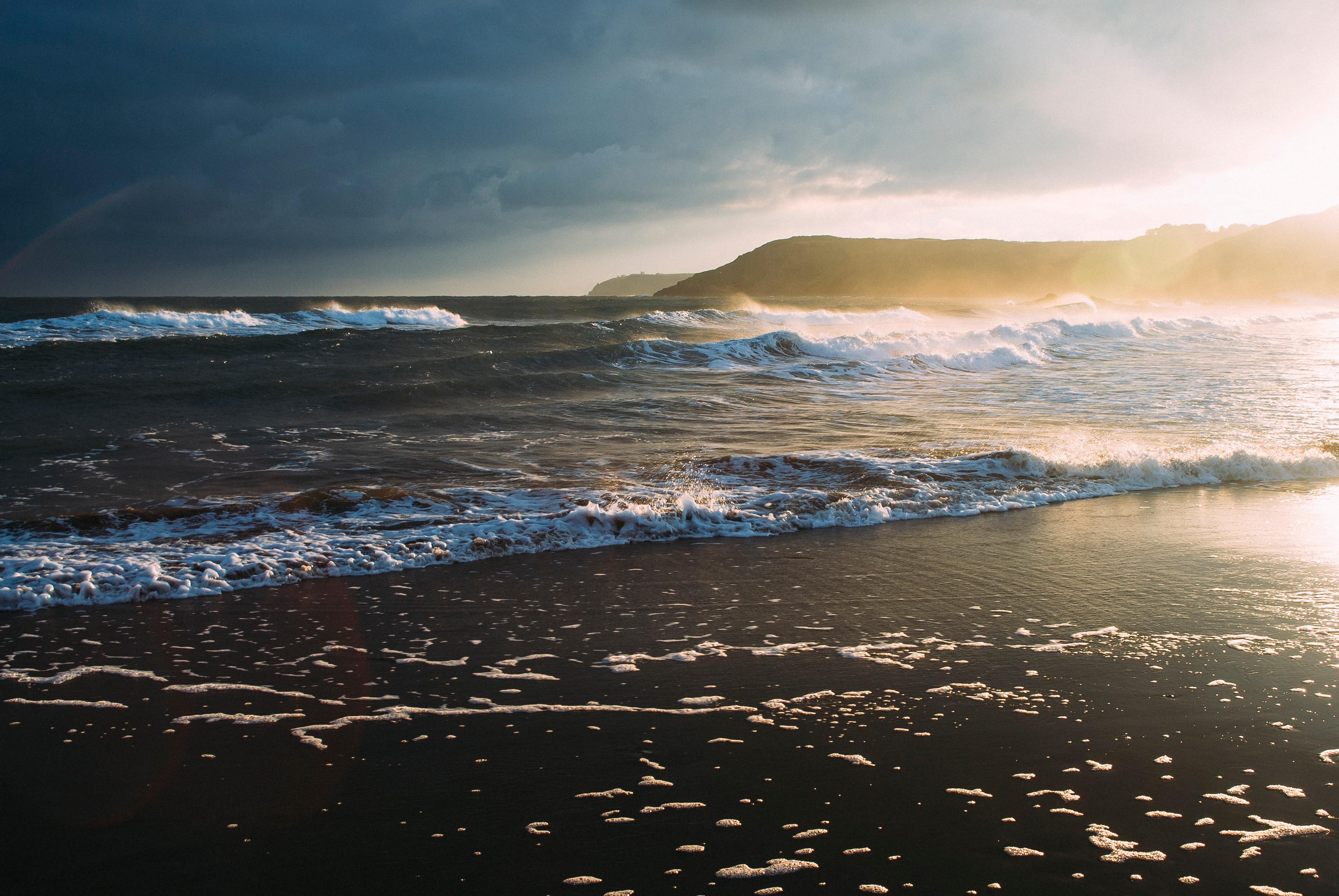 Фото море и океан смотрятся цветочные