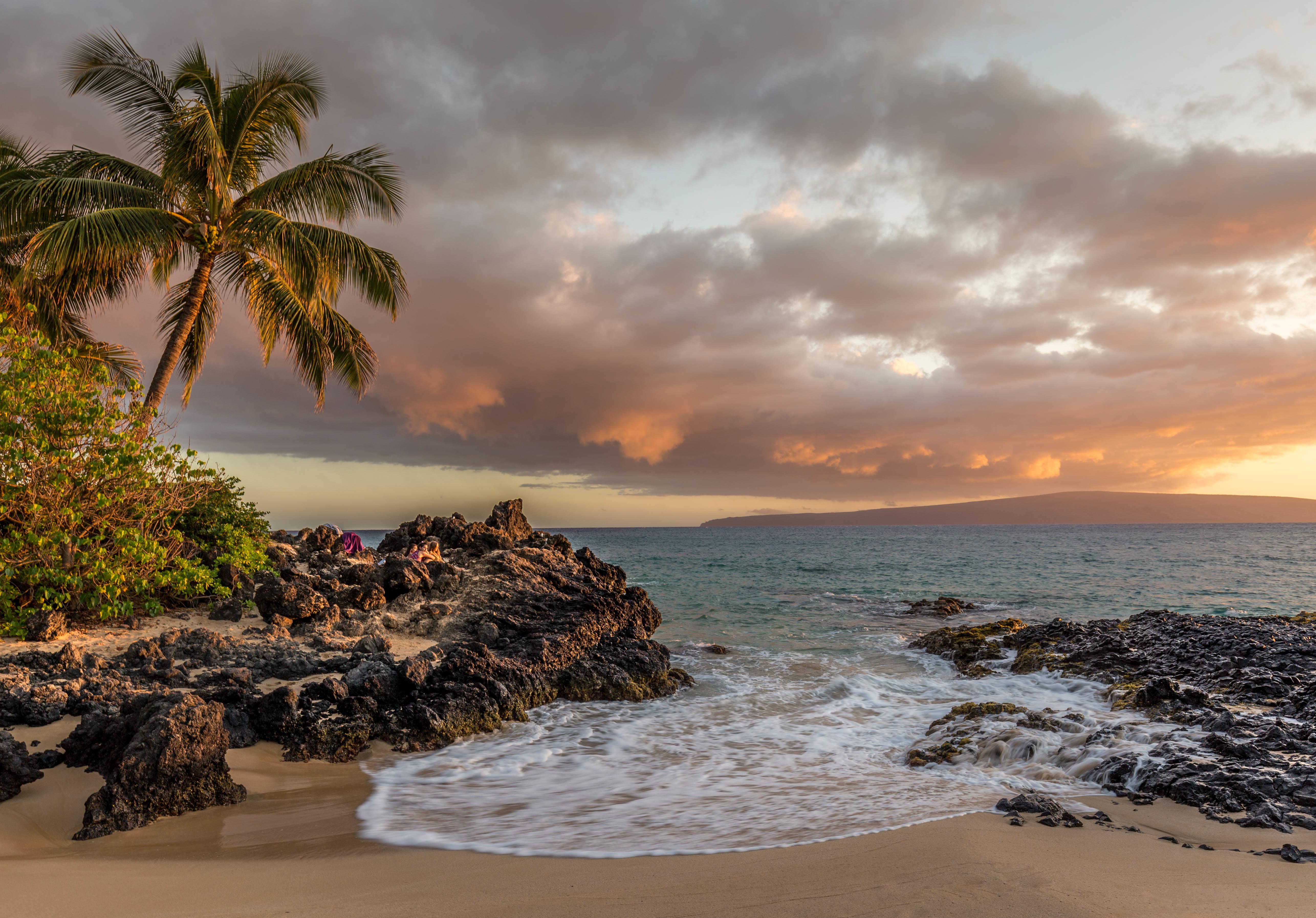 Картинка на сотку пальмы море дпс это