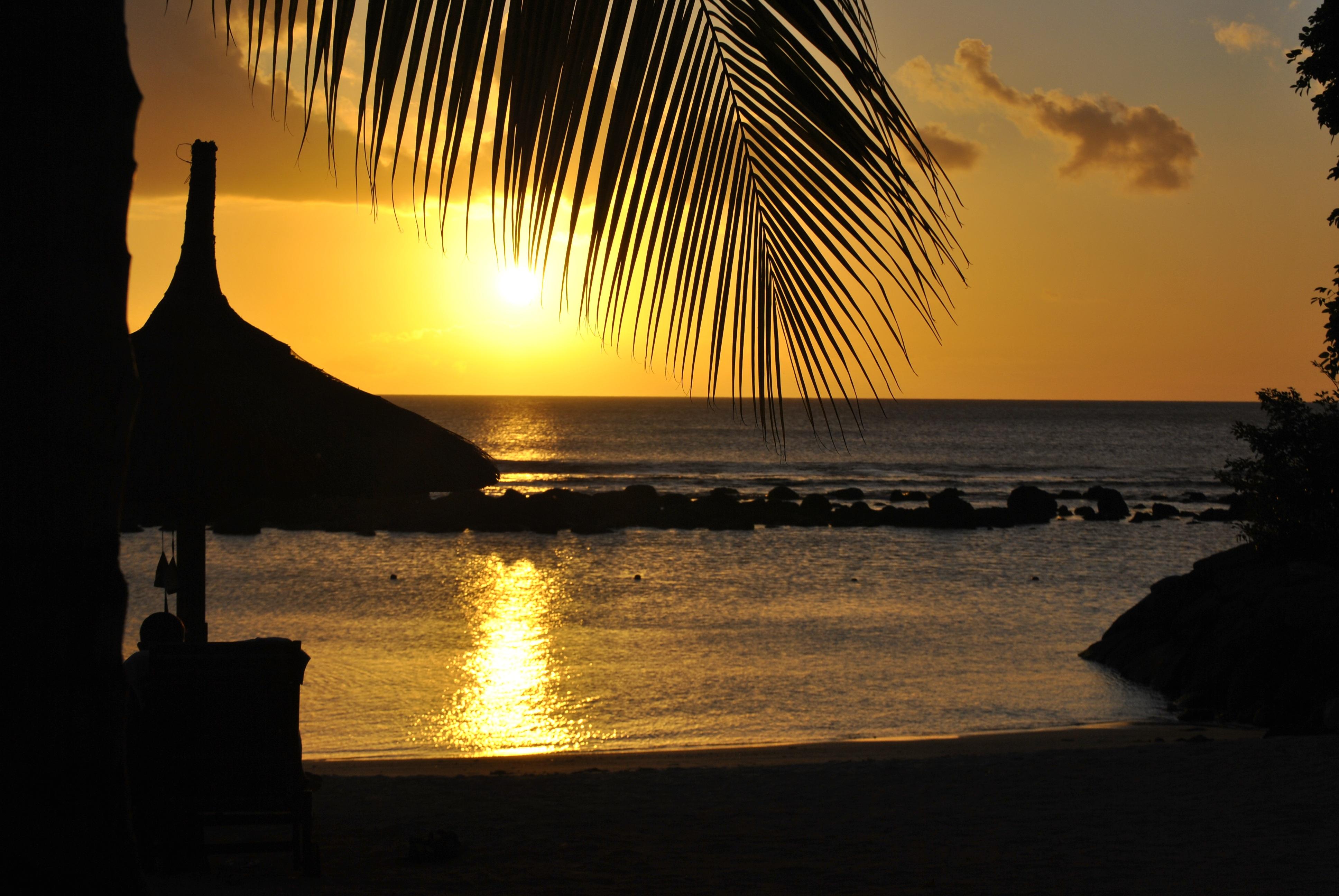 картинки море пляж ночь прочный материал