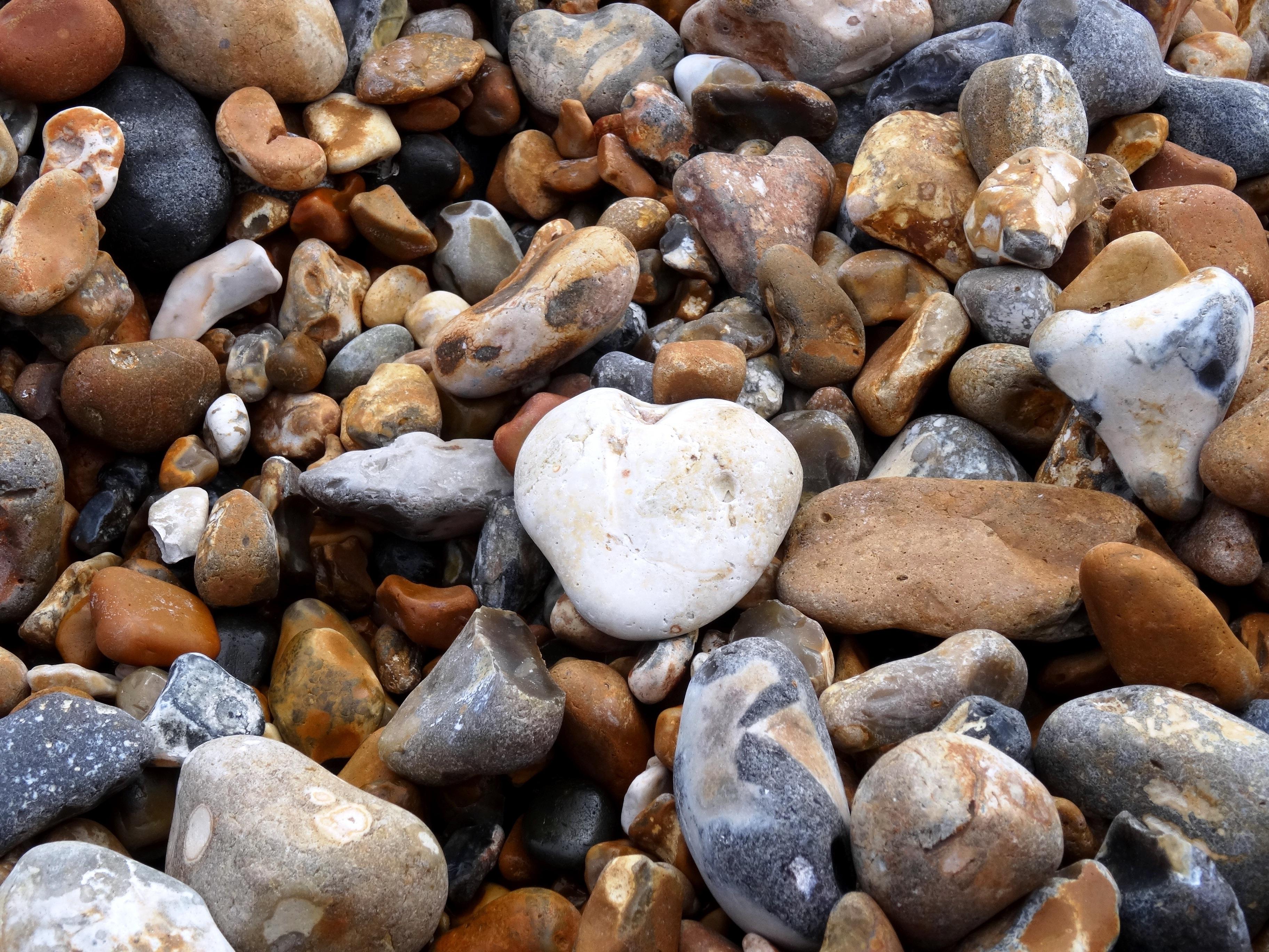 гальки других или камней фото морской