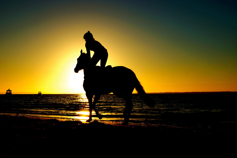 Free Images : beach, sea, silhouette, sunrise, sunset ...