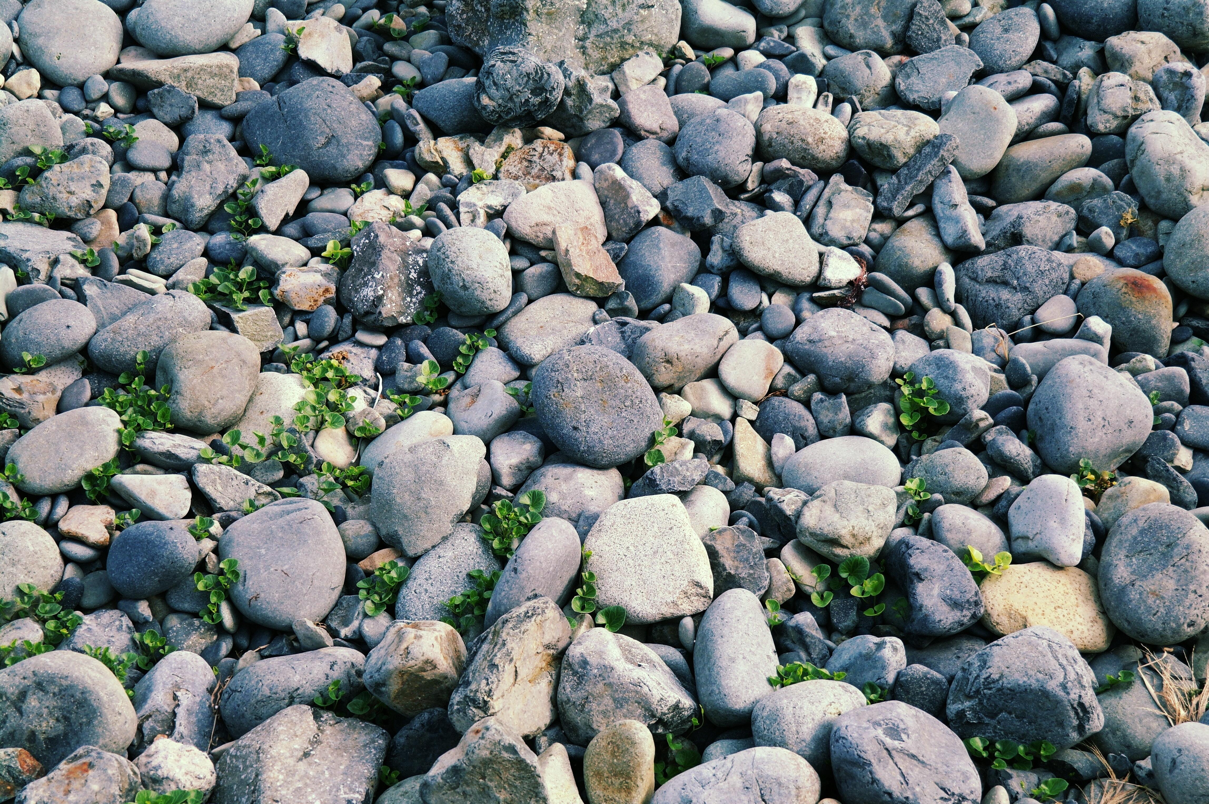 Gratis afbeeldingen strand zee water natuur rots abstract