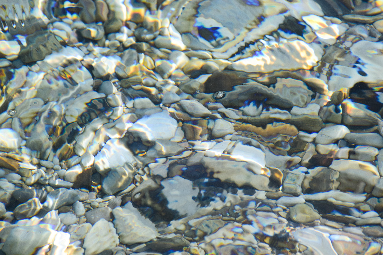 Gratis afbeeldingen strand zee water natuur rots oceaan