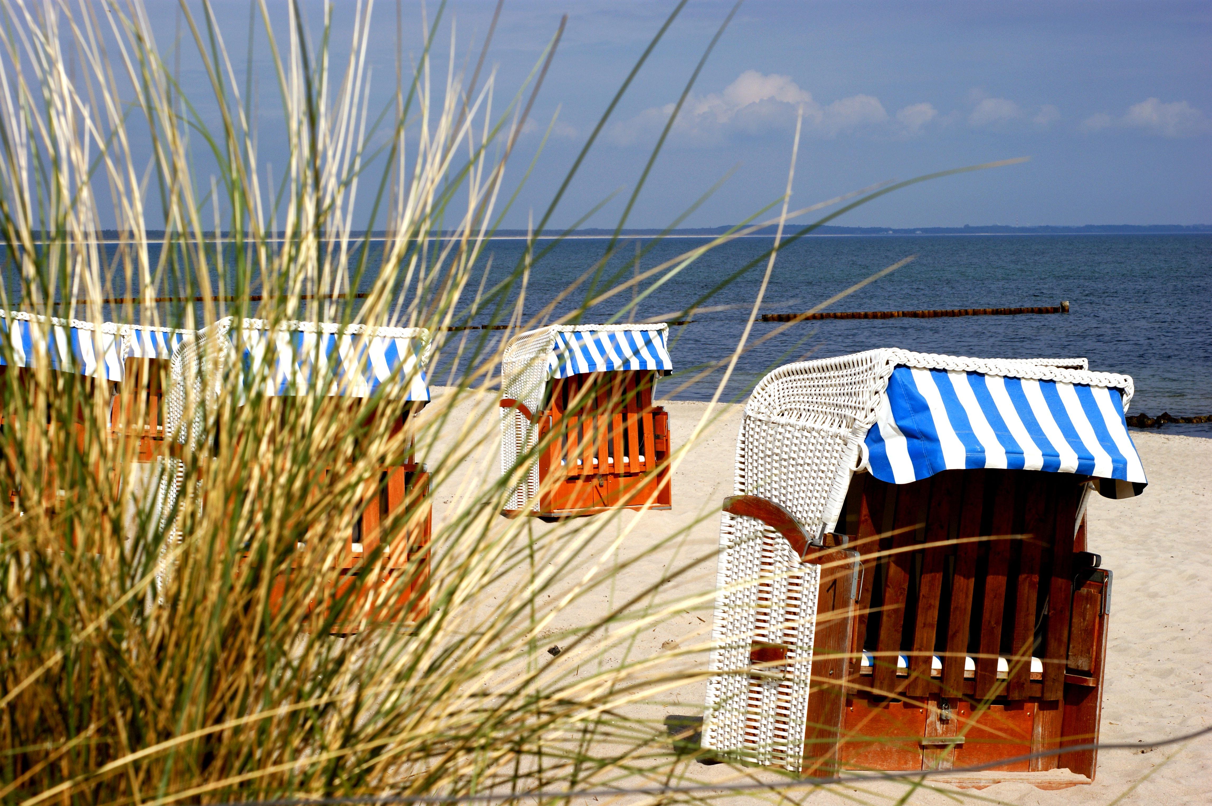 Fantastisk Bakgrundsbilder : hav, vind, Östersjön, strand stol, rugen, gräs VT37