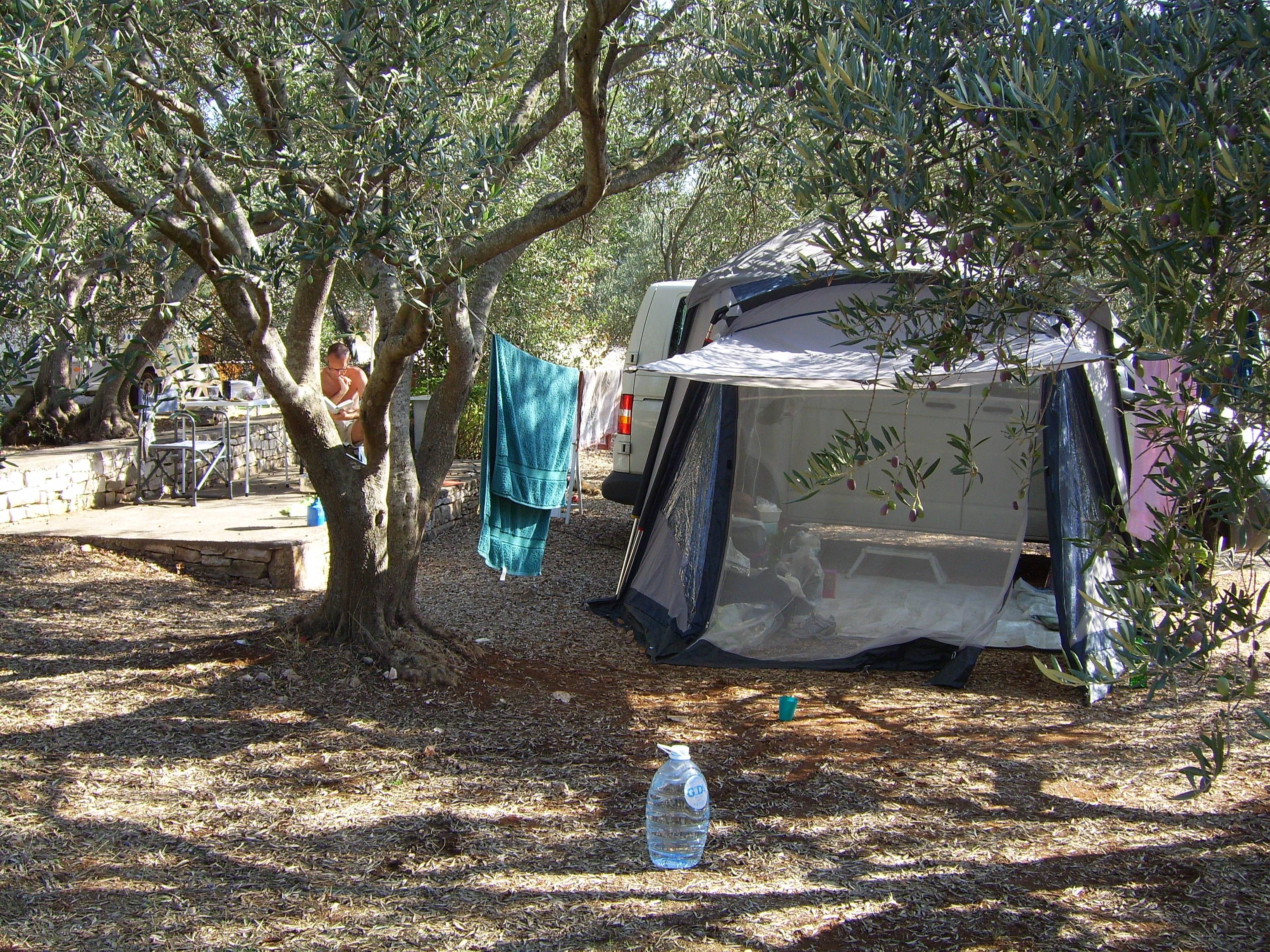 beach tree community holiday rest c&ing tent holidays c&ing holidays & Free Images : beach tree community holiday rest tent camping ...