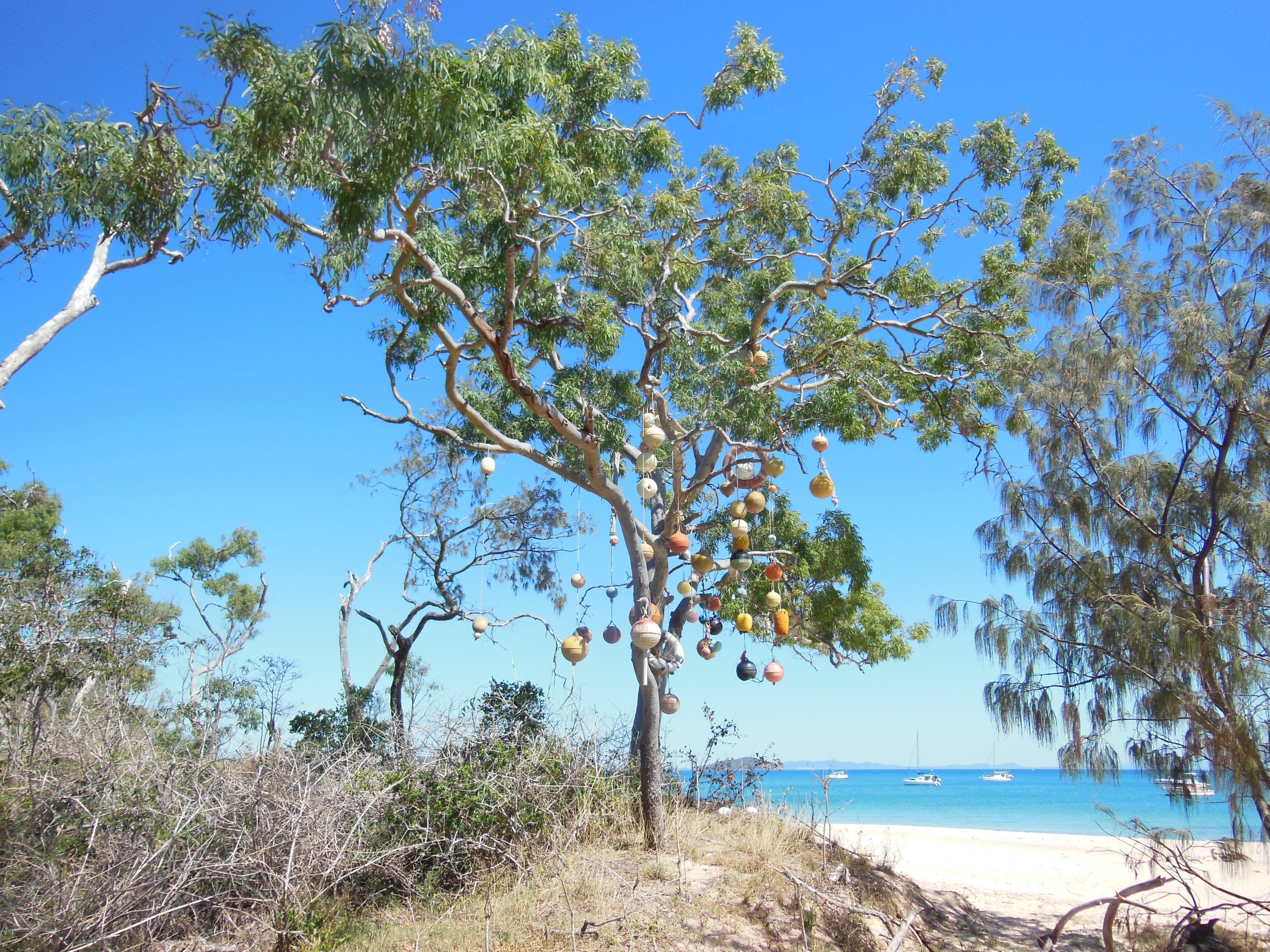 paradise island apk download