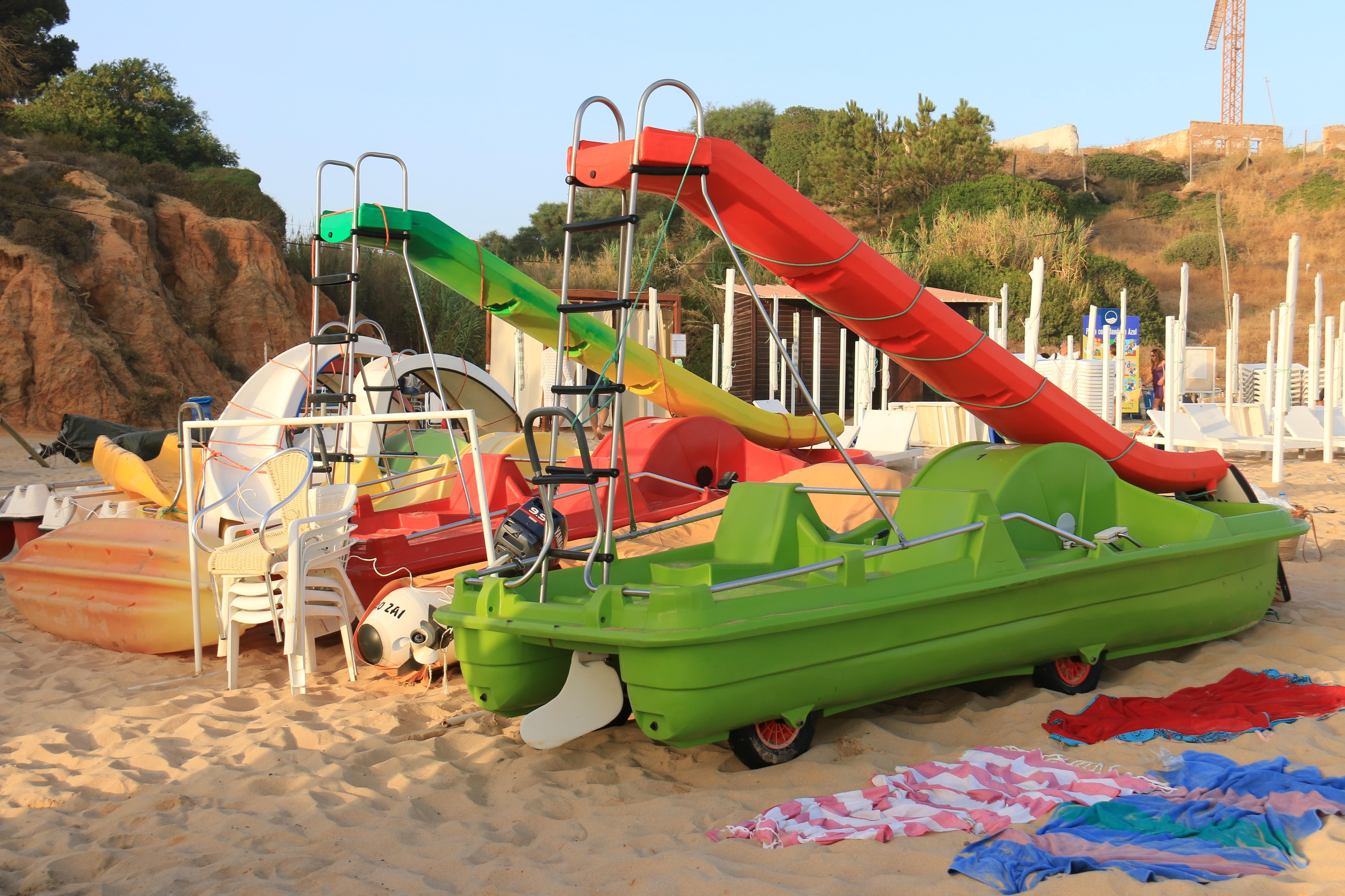Fotos Gratis Playa Naturaleza Oceano Jugar Gaviota