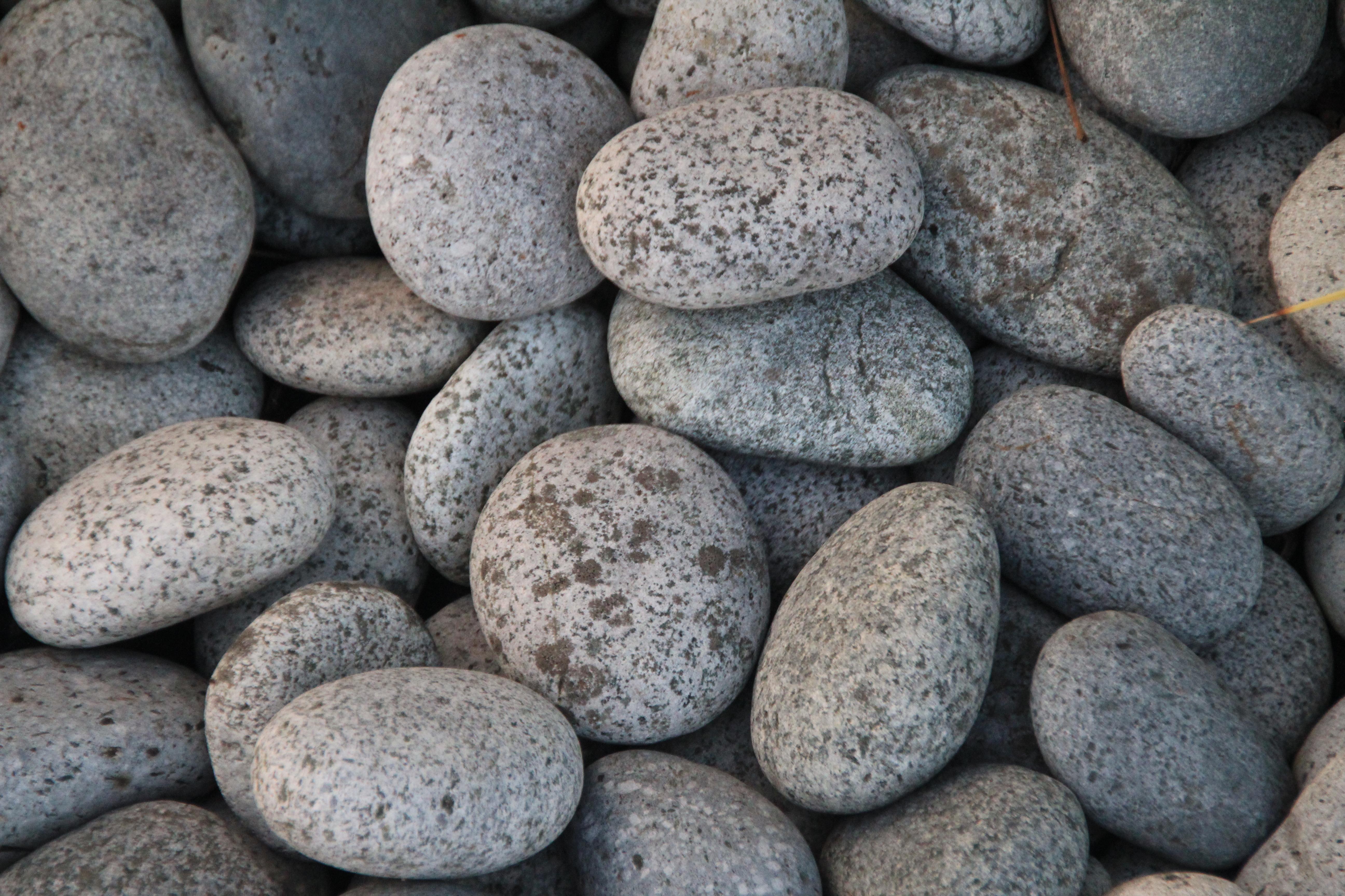 kostenlose foto strand wasser rock kopfstein kieselstein boden garten material steine. Black Bedroom Furniture Sets. Home Design Ideas