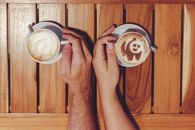 Kostenlose Foto Bär Tafel Frühstück Braun Cafe Koffein