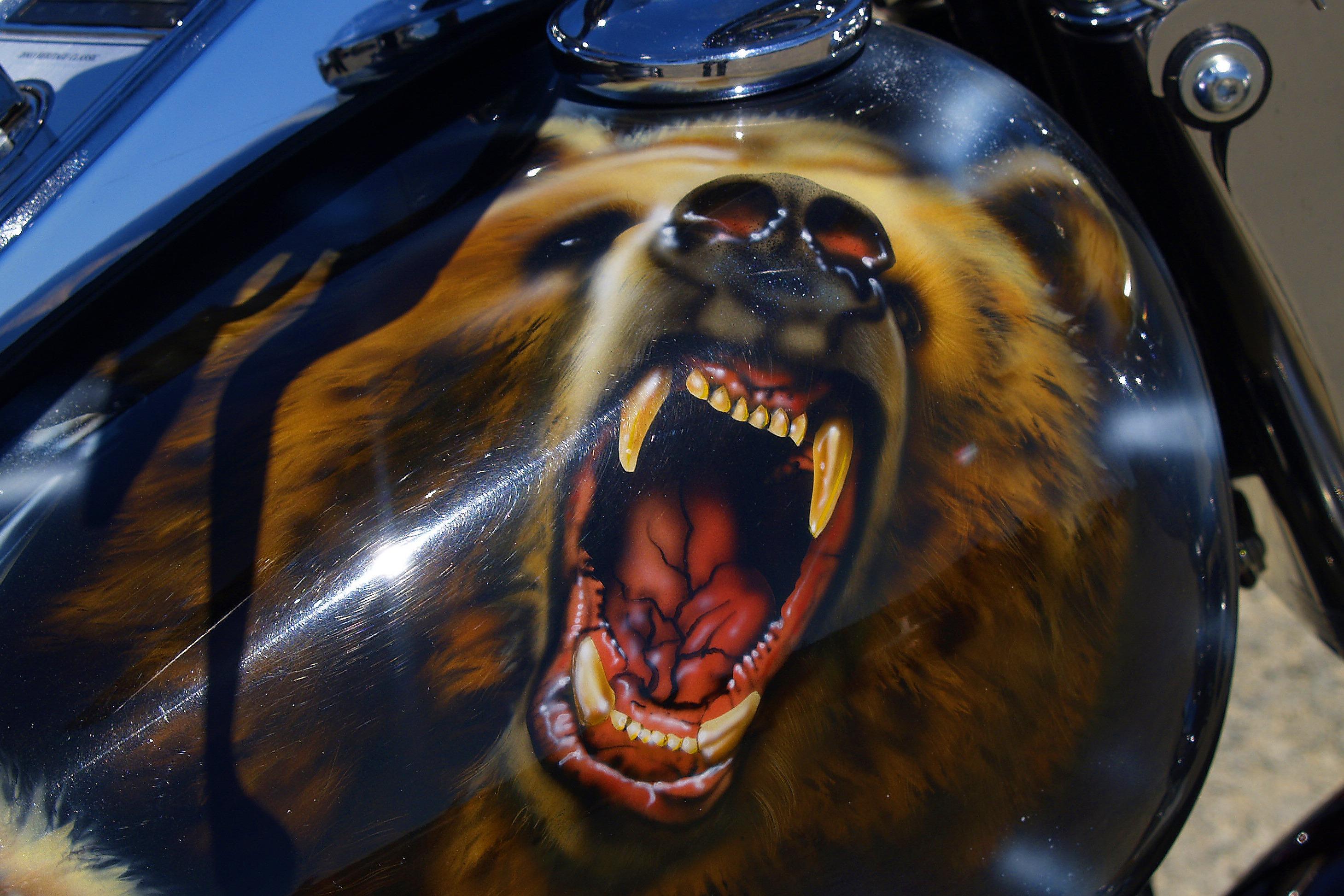 она картинки афиш медведей на мотоциклах красивыми кажутся