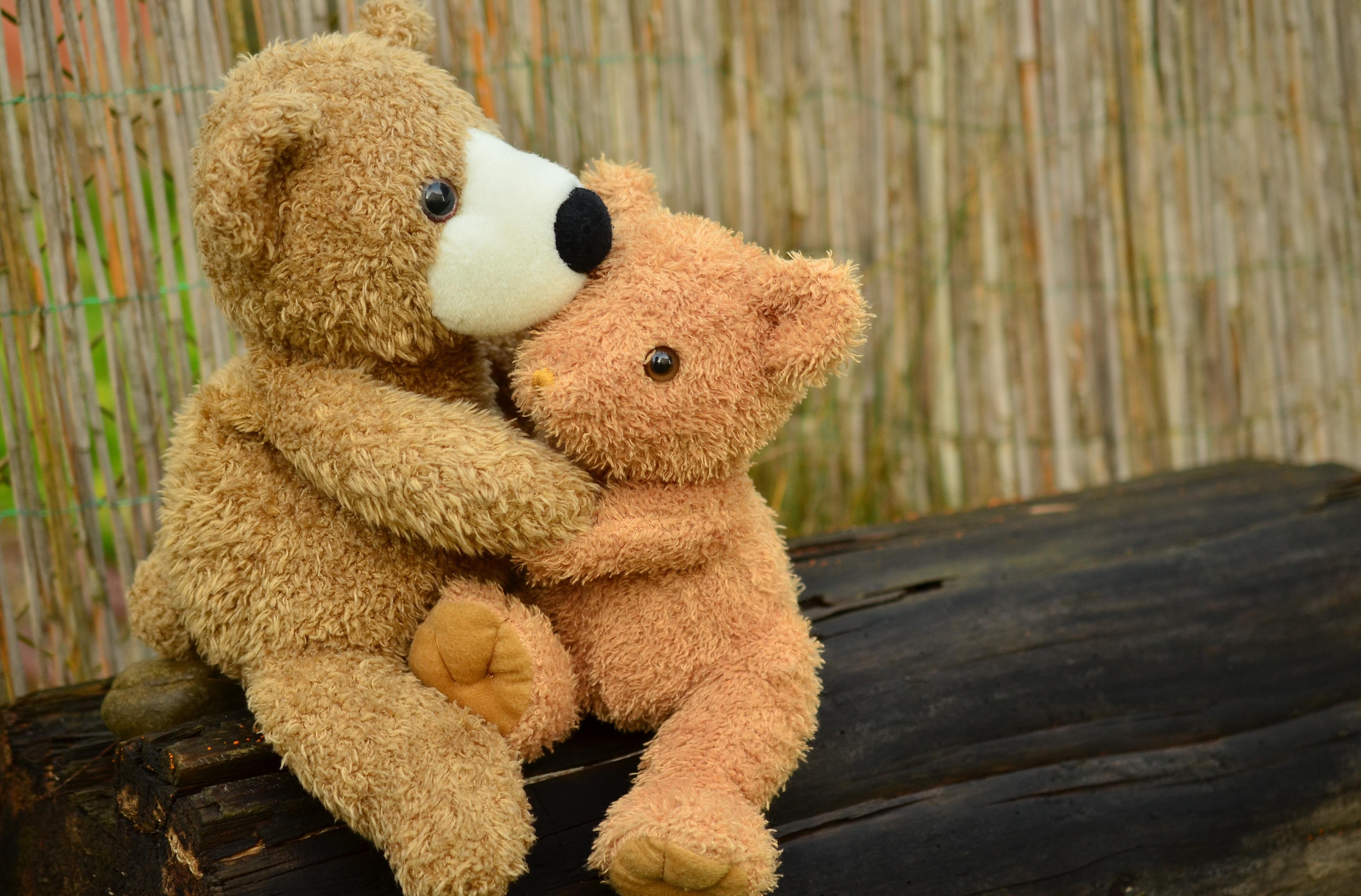 Gambar Cinta Persahabatan Beruang Teddy Tekstil Kenyamanan