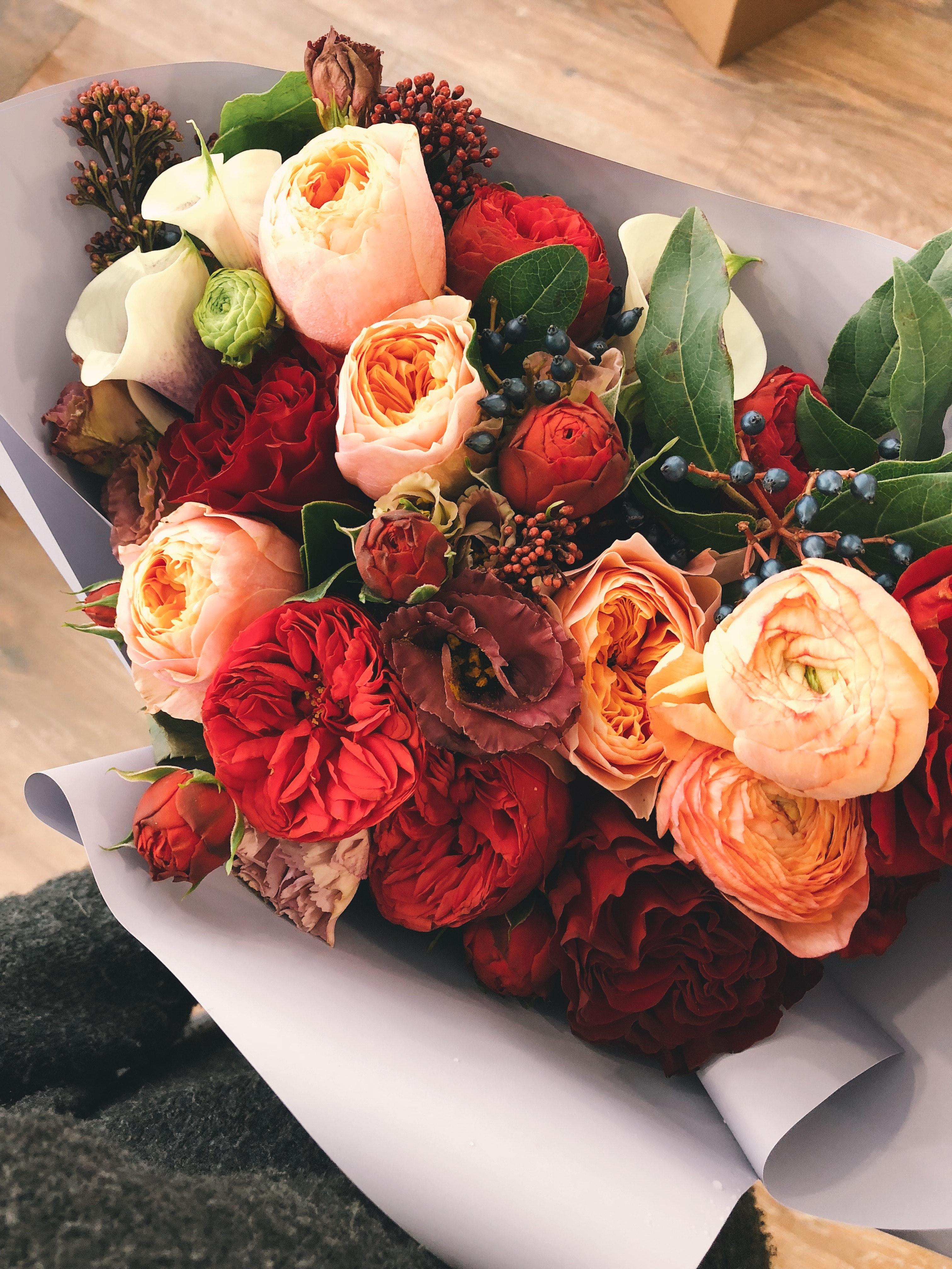 Fotoğraf Güzel çiçek Açmak çiçeklenme çiçek Buket Zarif