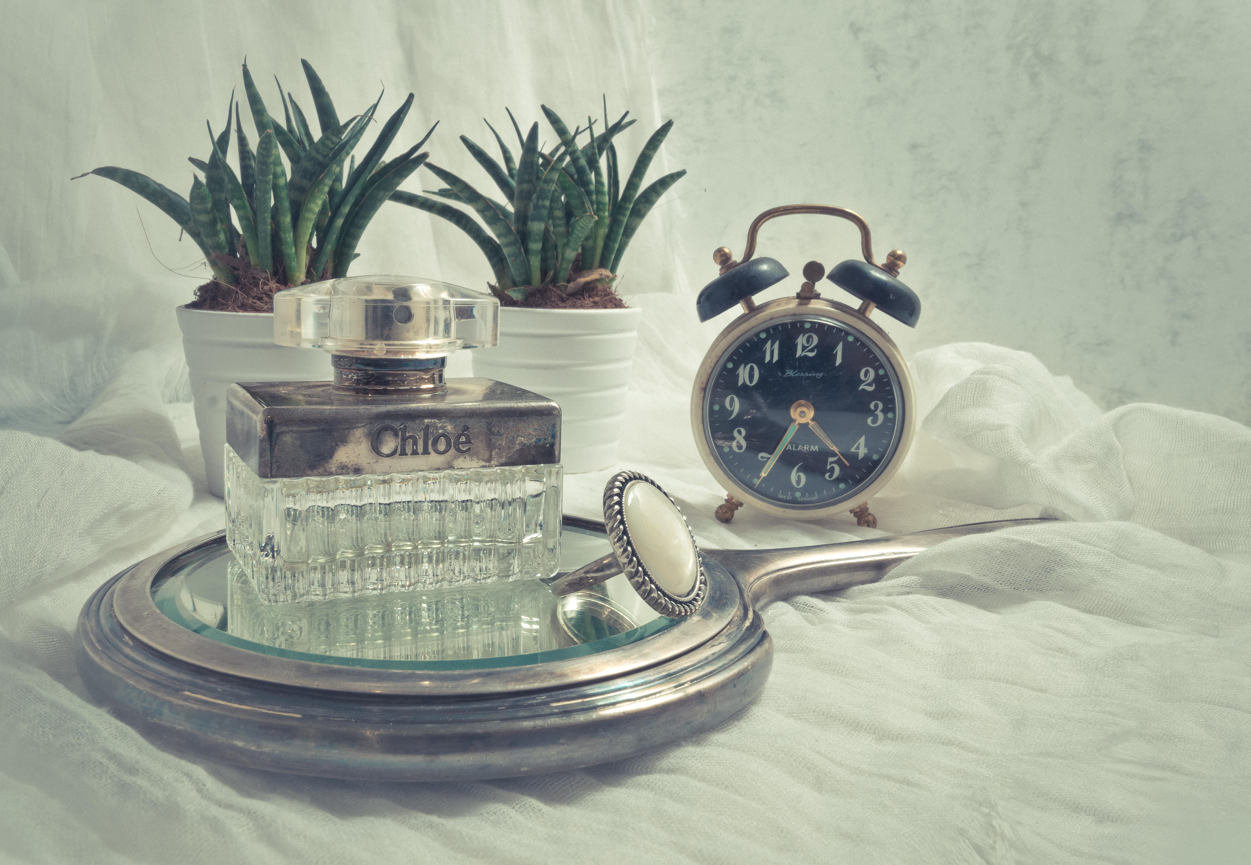download film sejarah parfum
