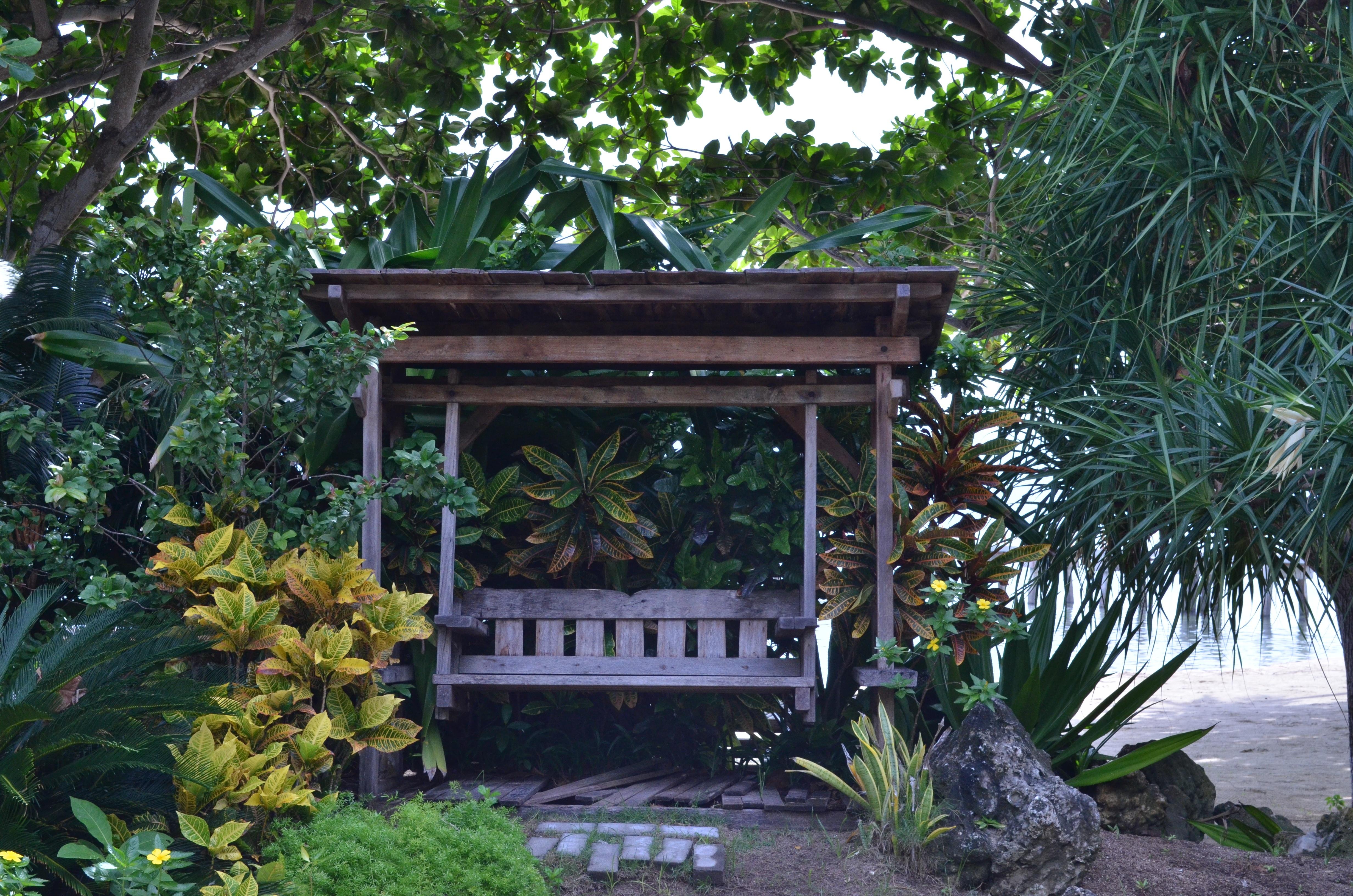 bakgrundsbilder : blomma, parkera, lusthus, botanik, trädgård, ha